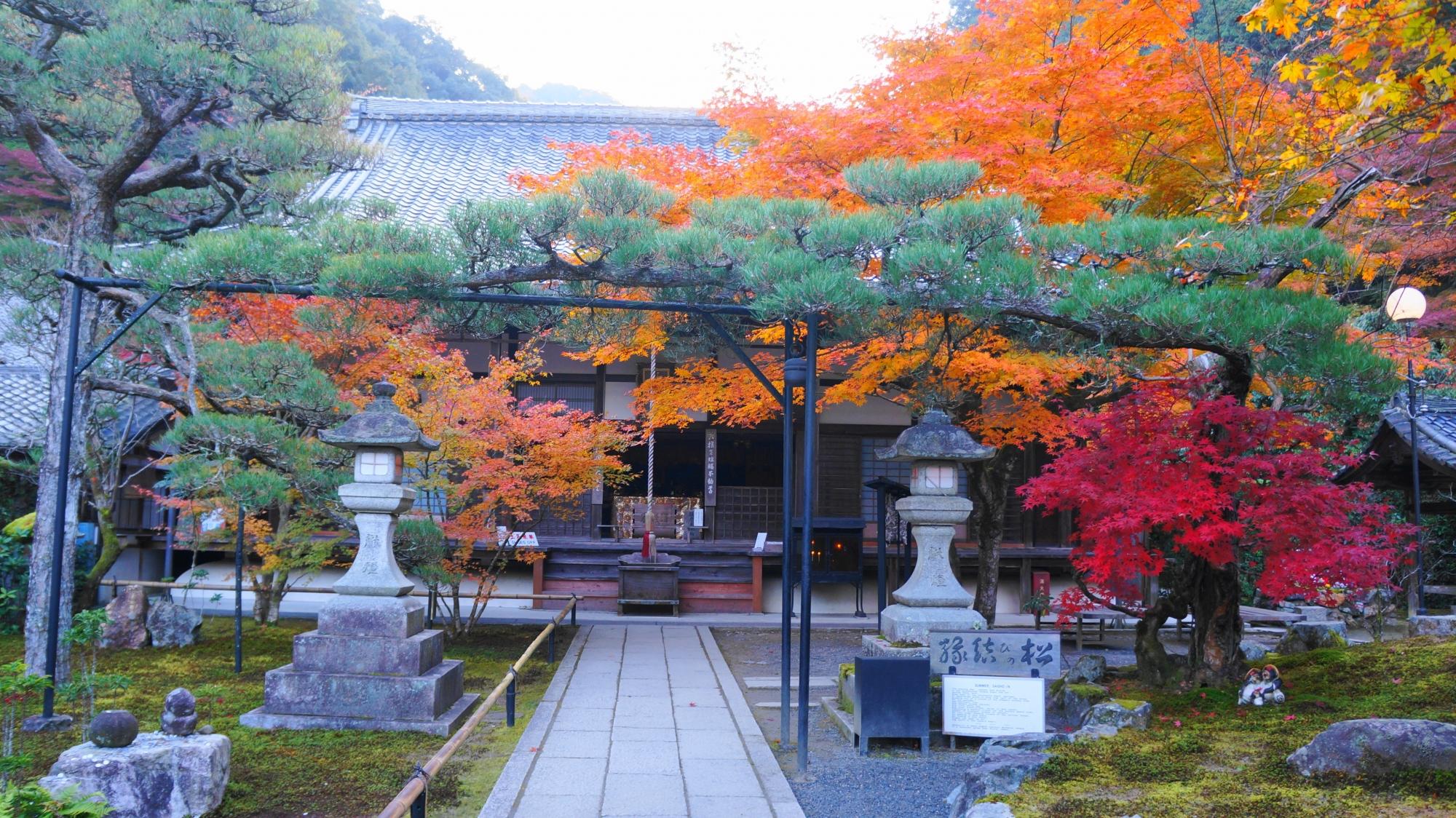 最勝院に広がる雨上がりのしっとりとした見事な秋色の光景