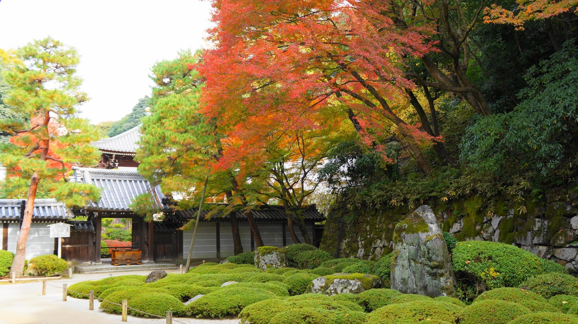 二十五菩薩の庭の風情ある紅葉