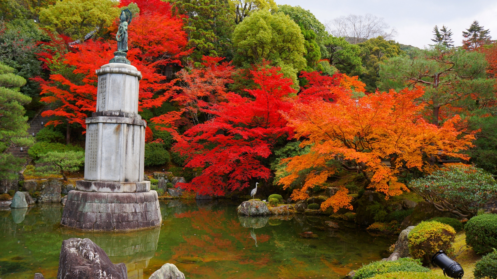 秋の知恩院友禅苑の極上の彩り