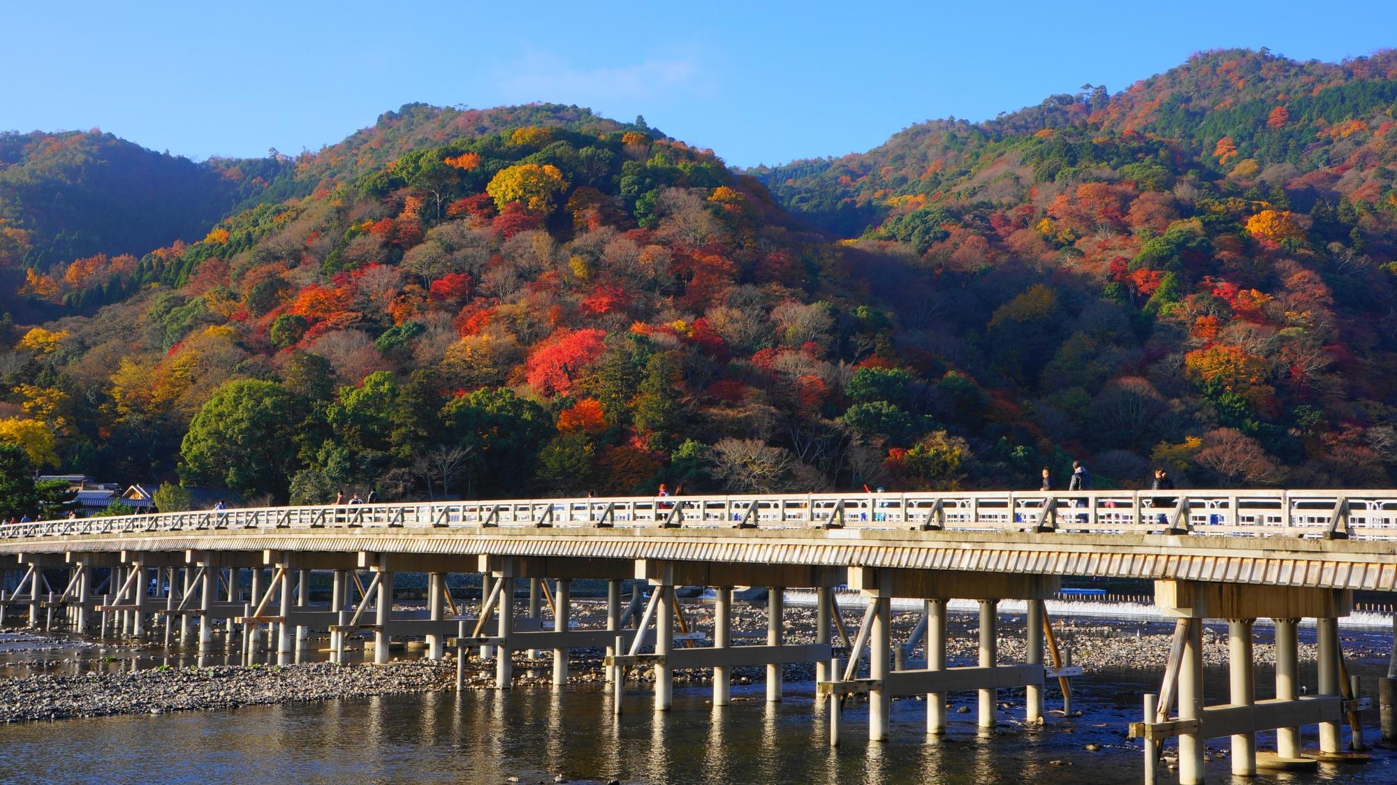 渡月橋の向こうで華やぐ多彩な秋色の嵐山