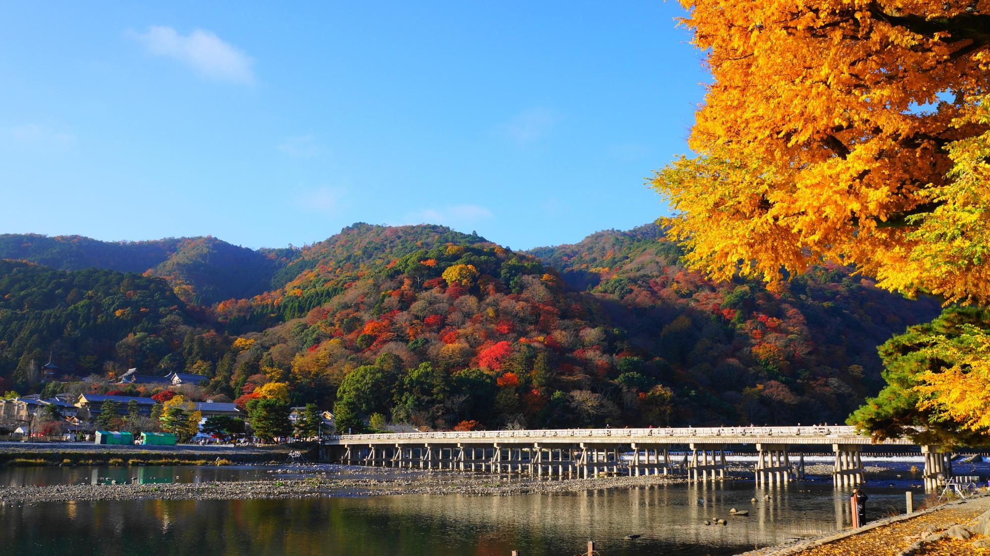 嵐山と渡月橋の華やかな秋の彩り