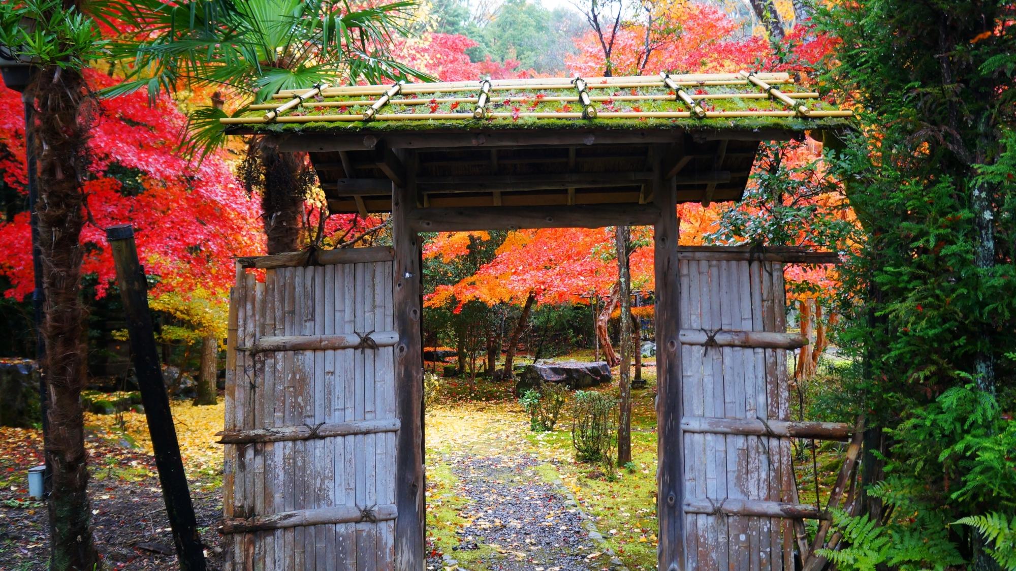 栖賢寺の門(入口)