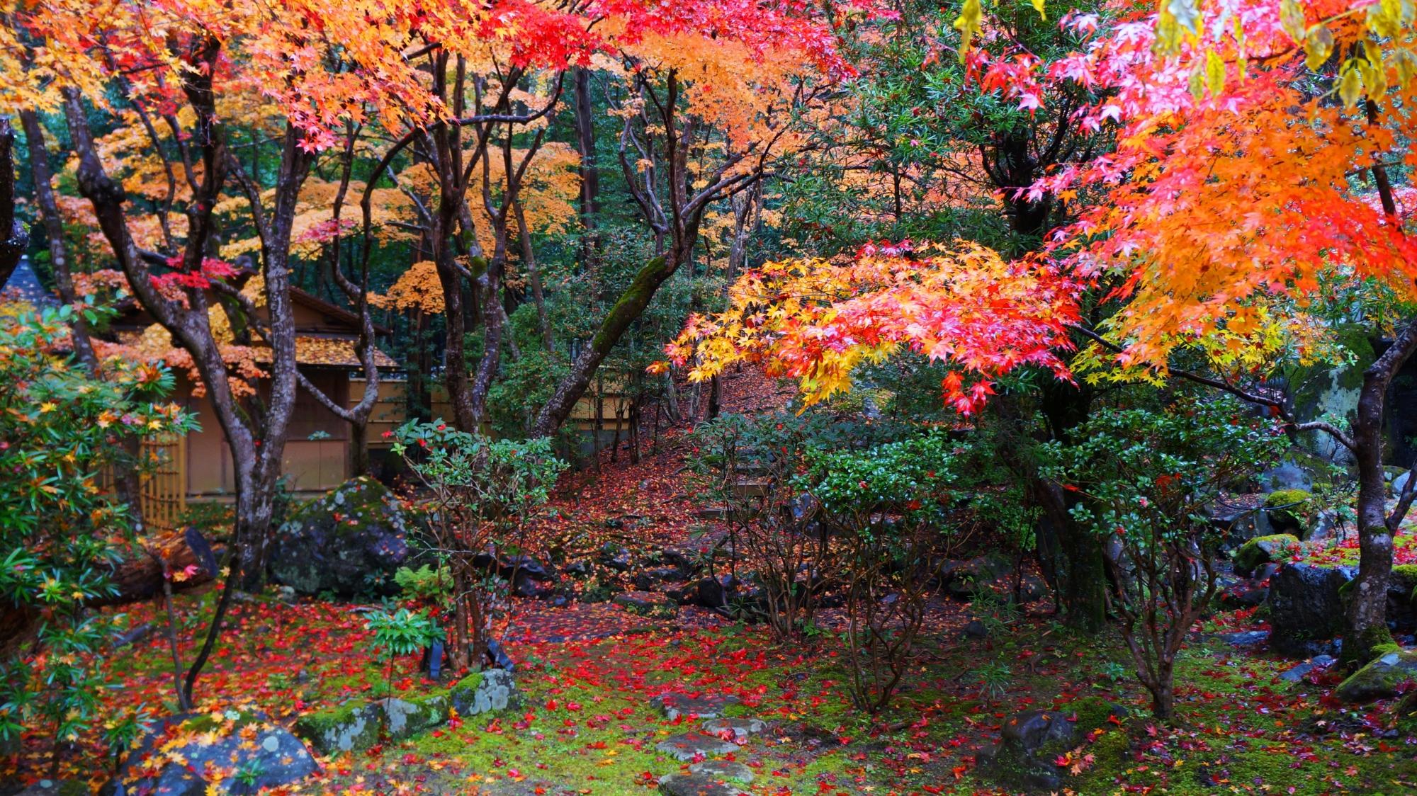 見事な秋色の庭園の栖賢寺
