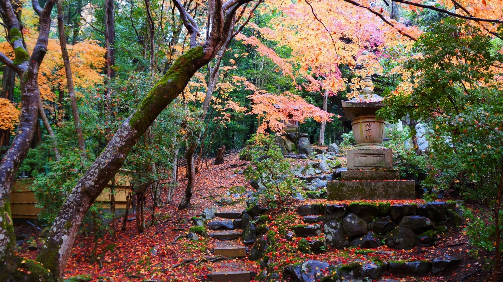 栖賢寺の石塔と紅葉