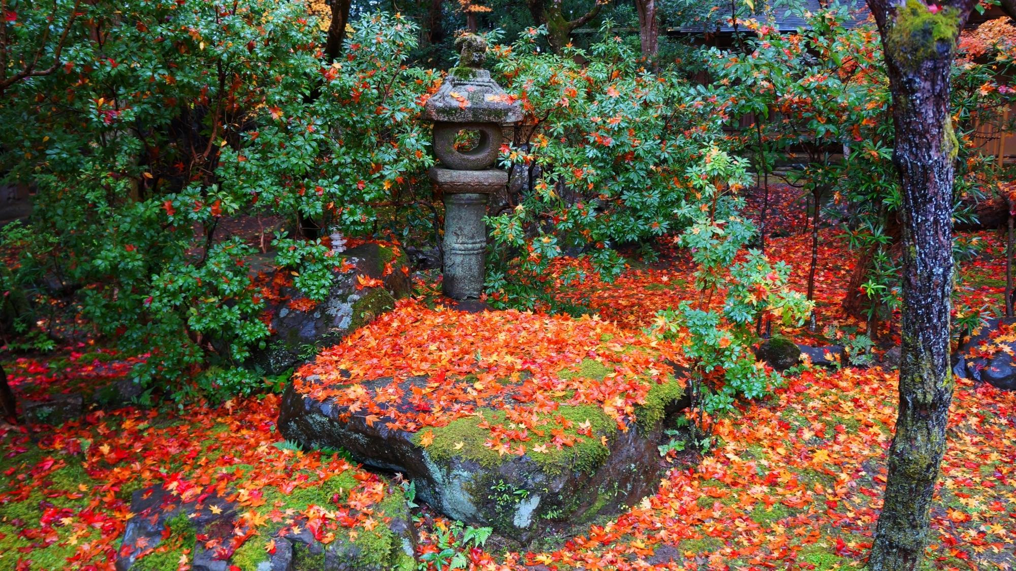 栖賢寺の色とりどりの散り紅葉