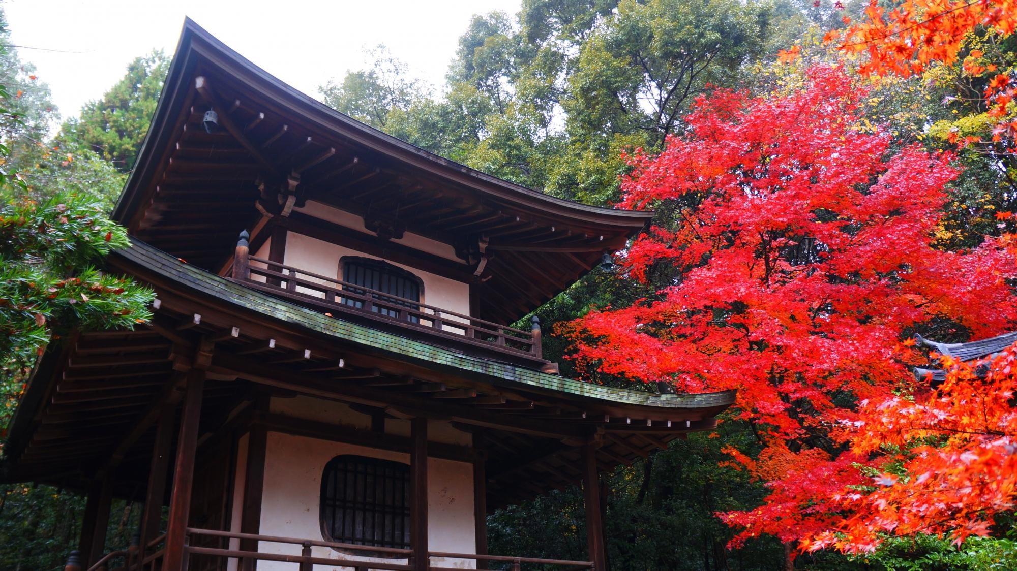 栖賢寺の絵になる秋の風景