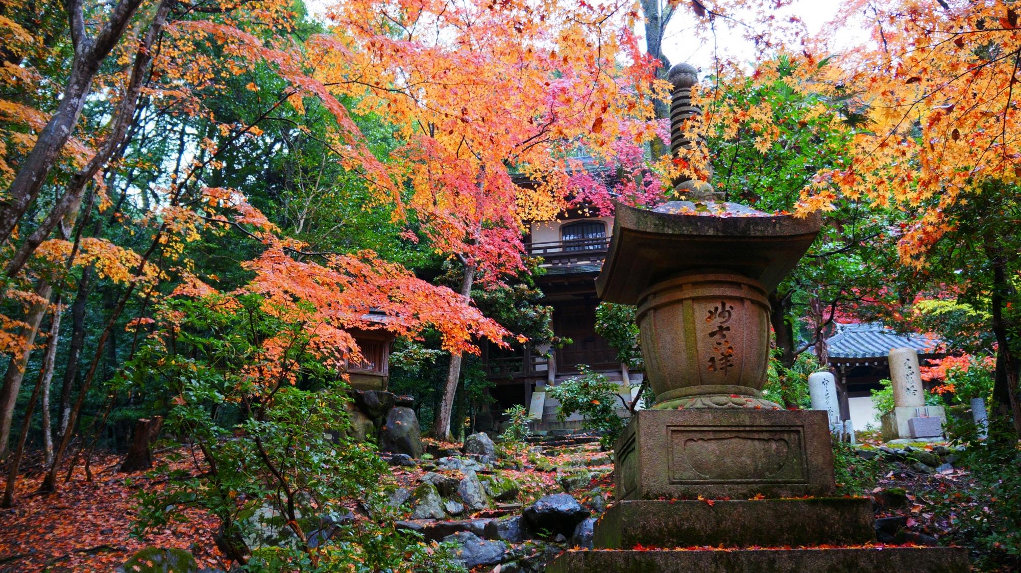 栖賢寺の観音堂と紅葉