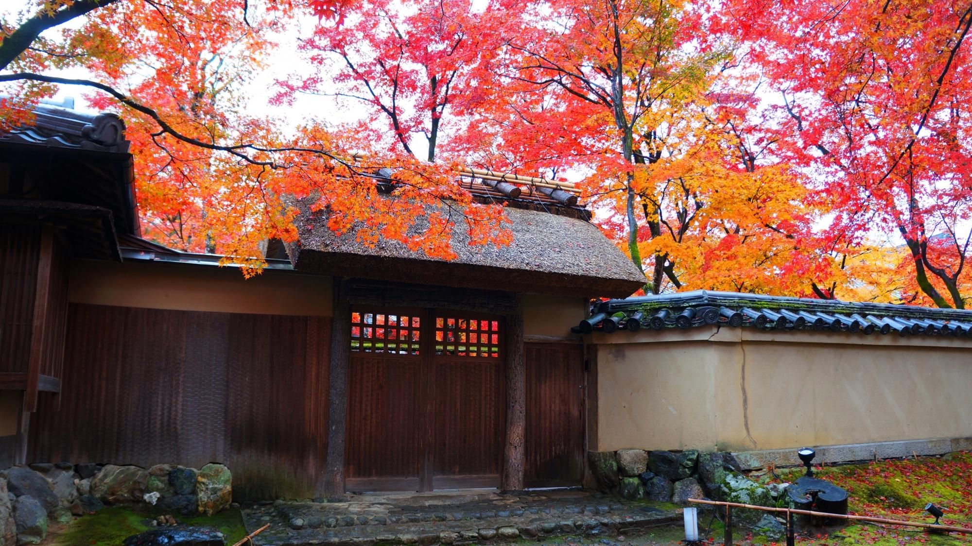 宝厳院の庭園の門と色とりどりの紅葉