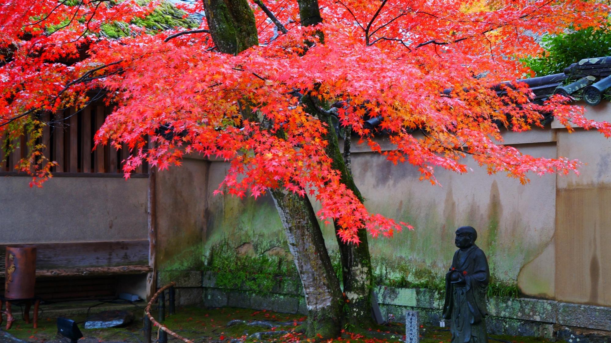 宝厳院の山門前の紅葉