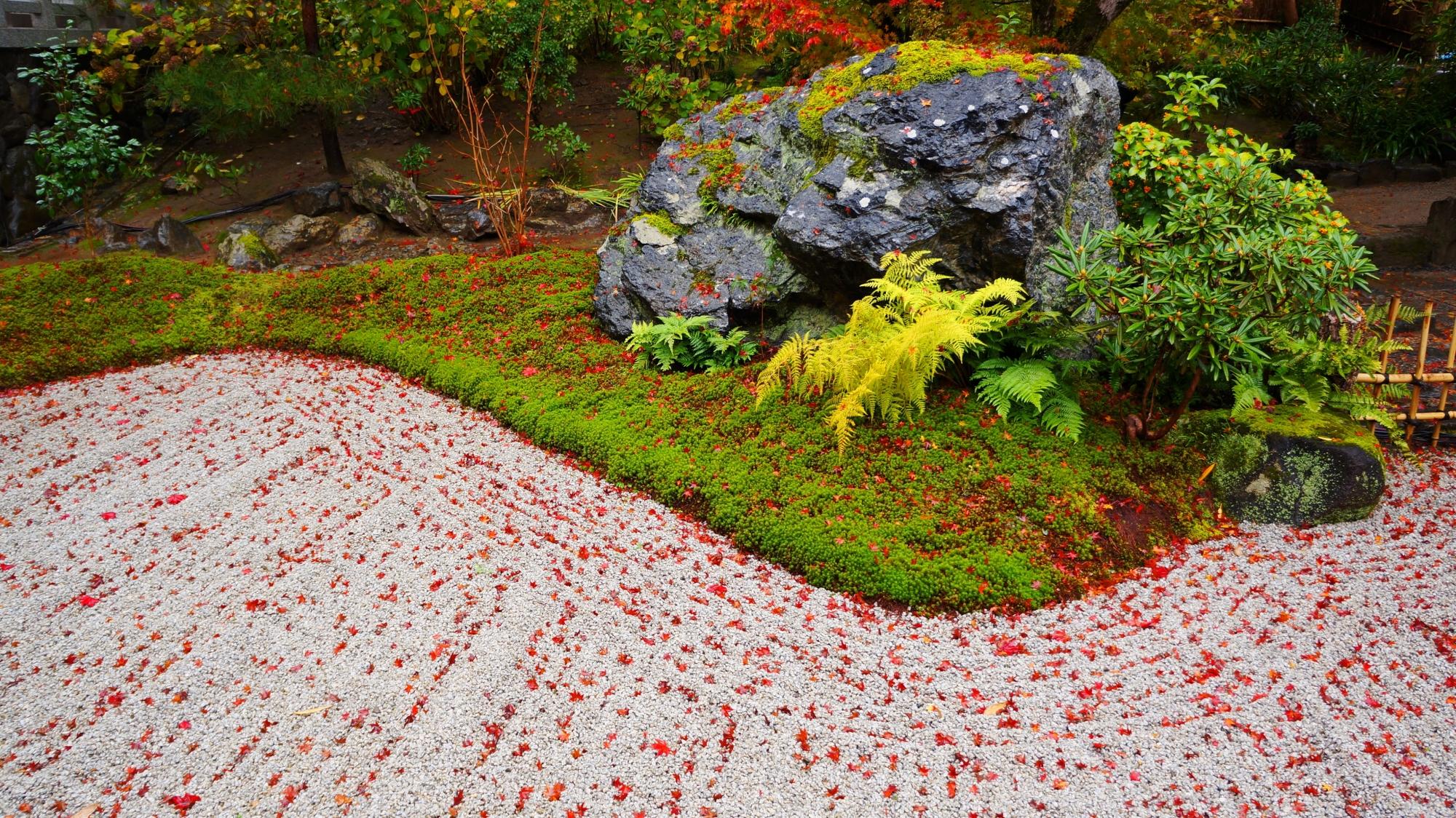 宝厳院の石庭の砂に散った赤い紅葉