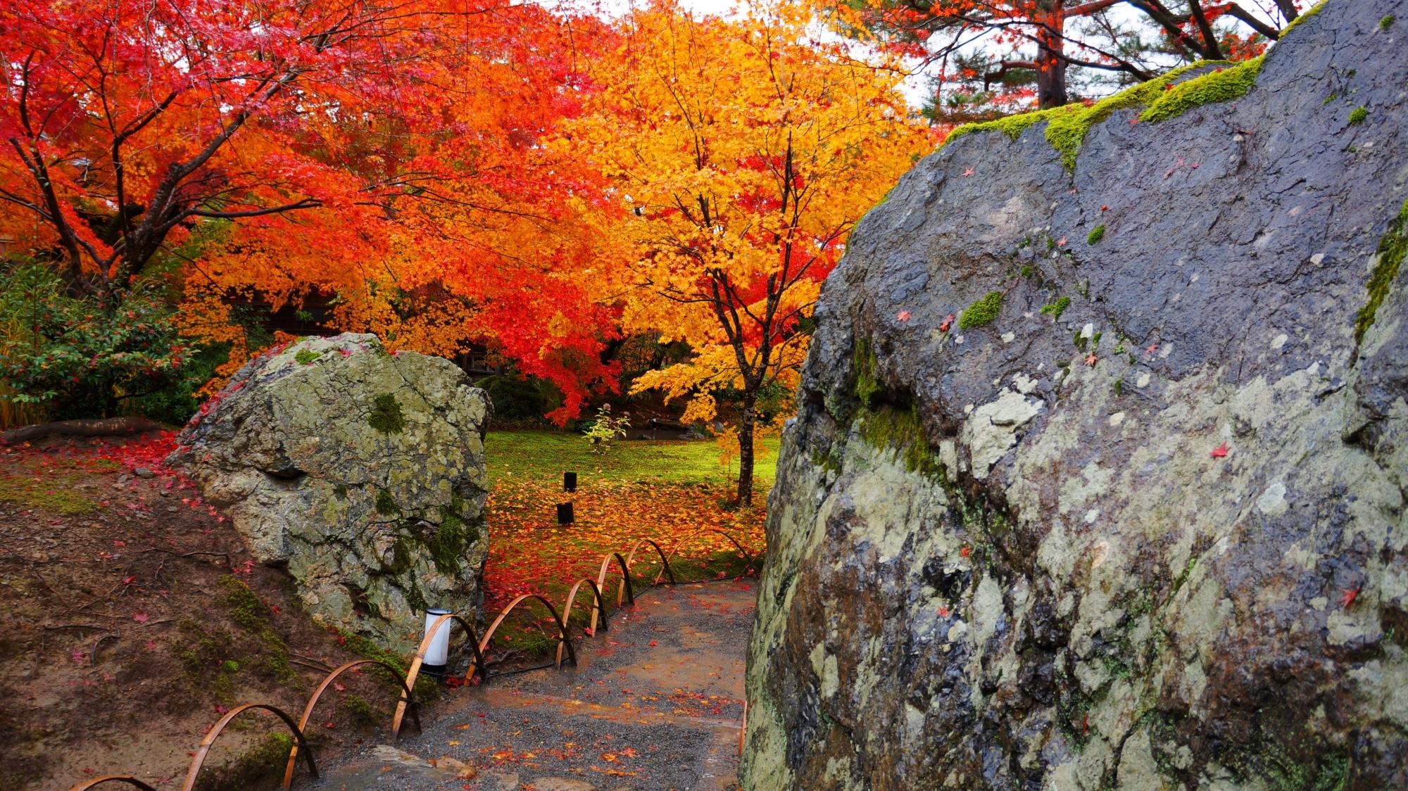 獅子吼の庭の碧岩と紅葉