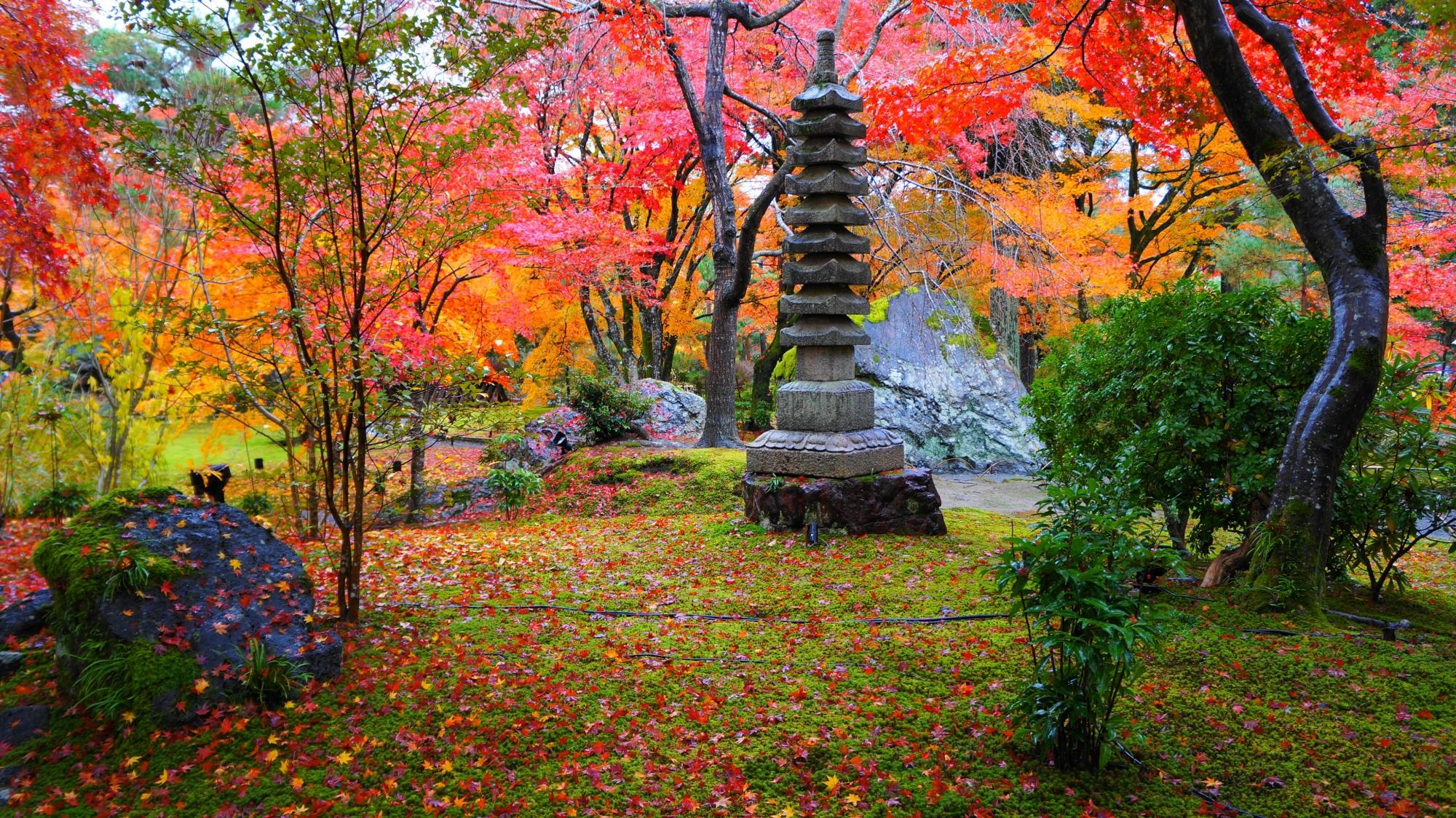 宝厳院の素晴らしすぎる紅葉の空間