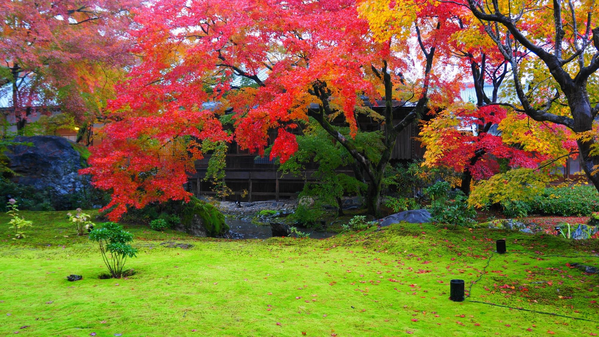 獅子吼の庭 高画質 紅葉 写真