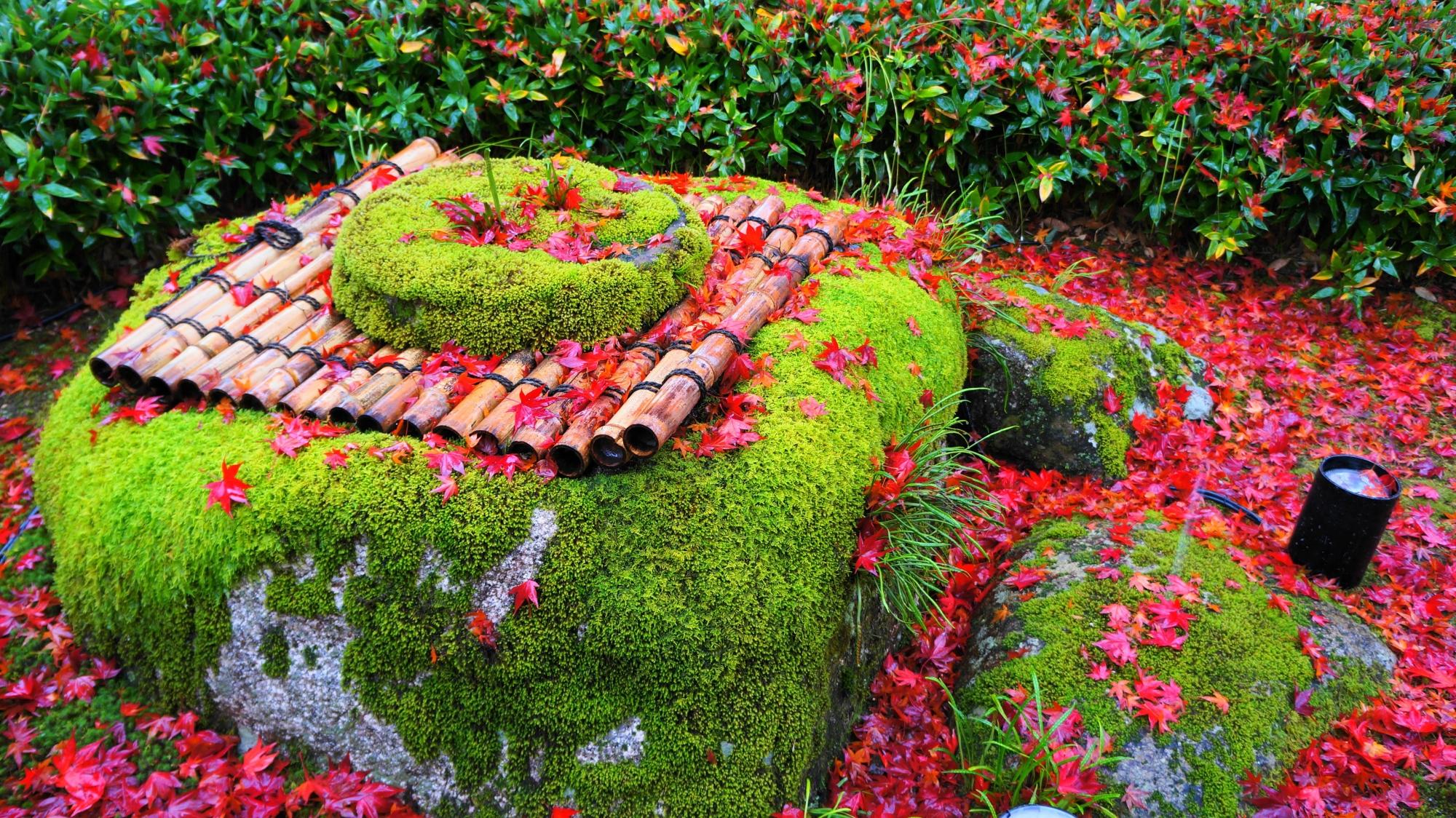 宝厳院の苔に覆われた井戸に散る紅葉