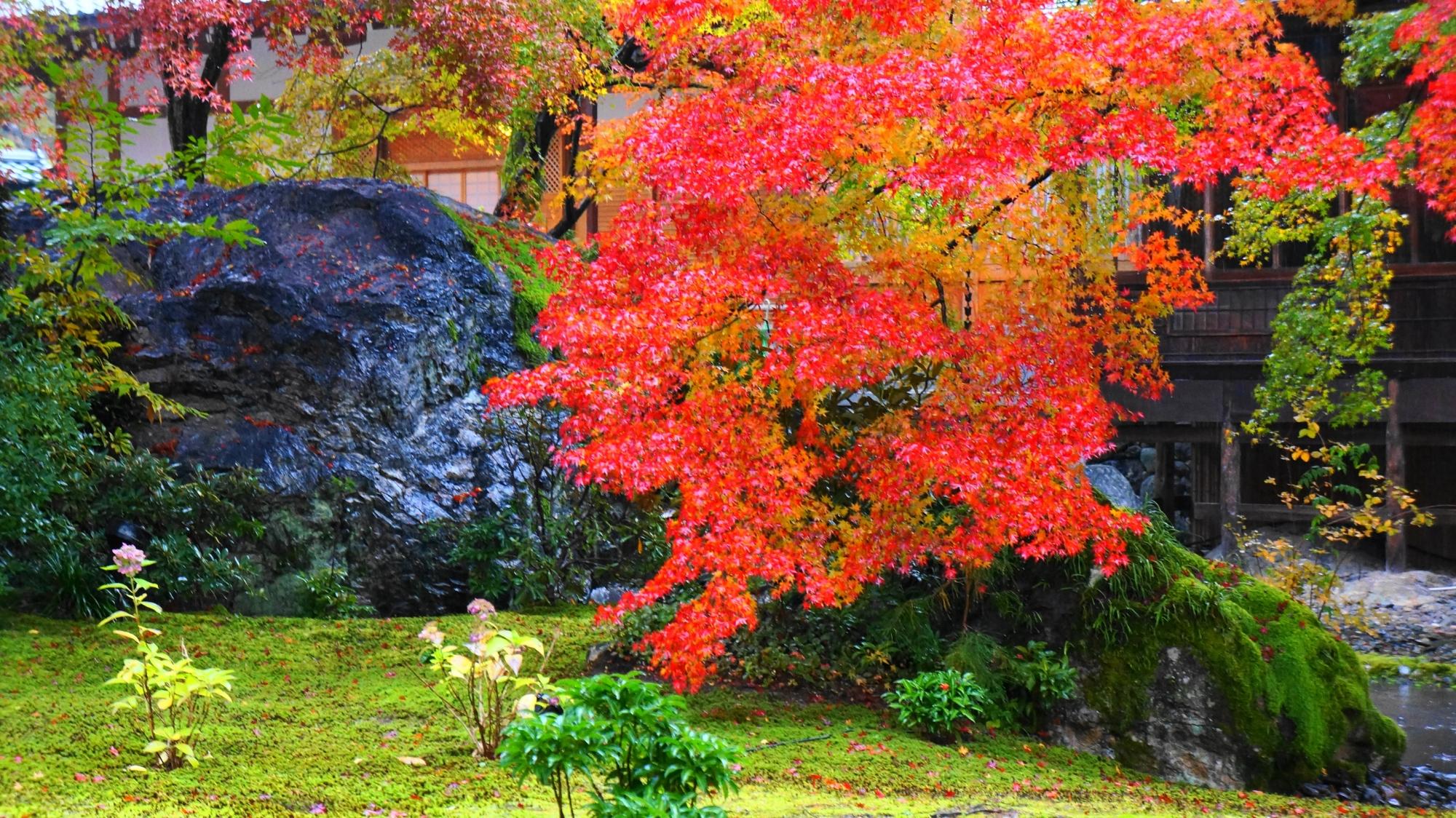 宝厳院の響岩と鮮やかな紅葉