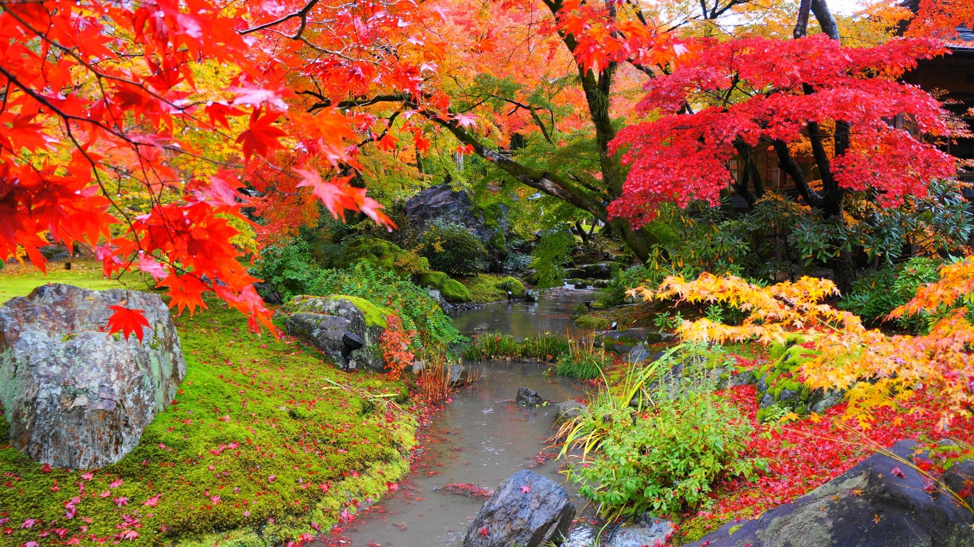 色とりどりの紅葉につつまれた響岩と小川と書院