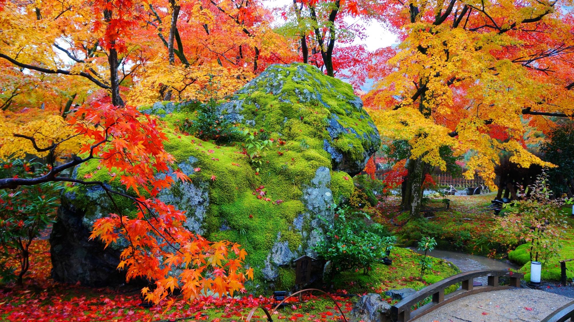 紅葉につつまれたライオンに見える獅子岩