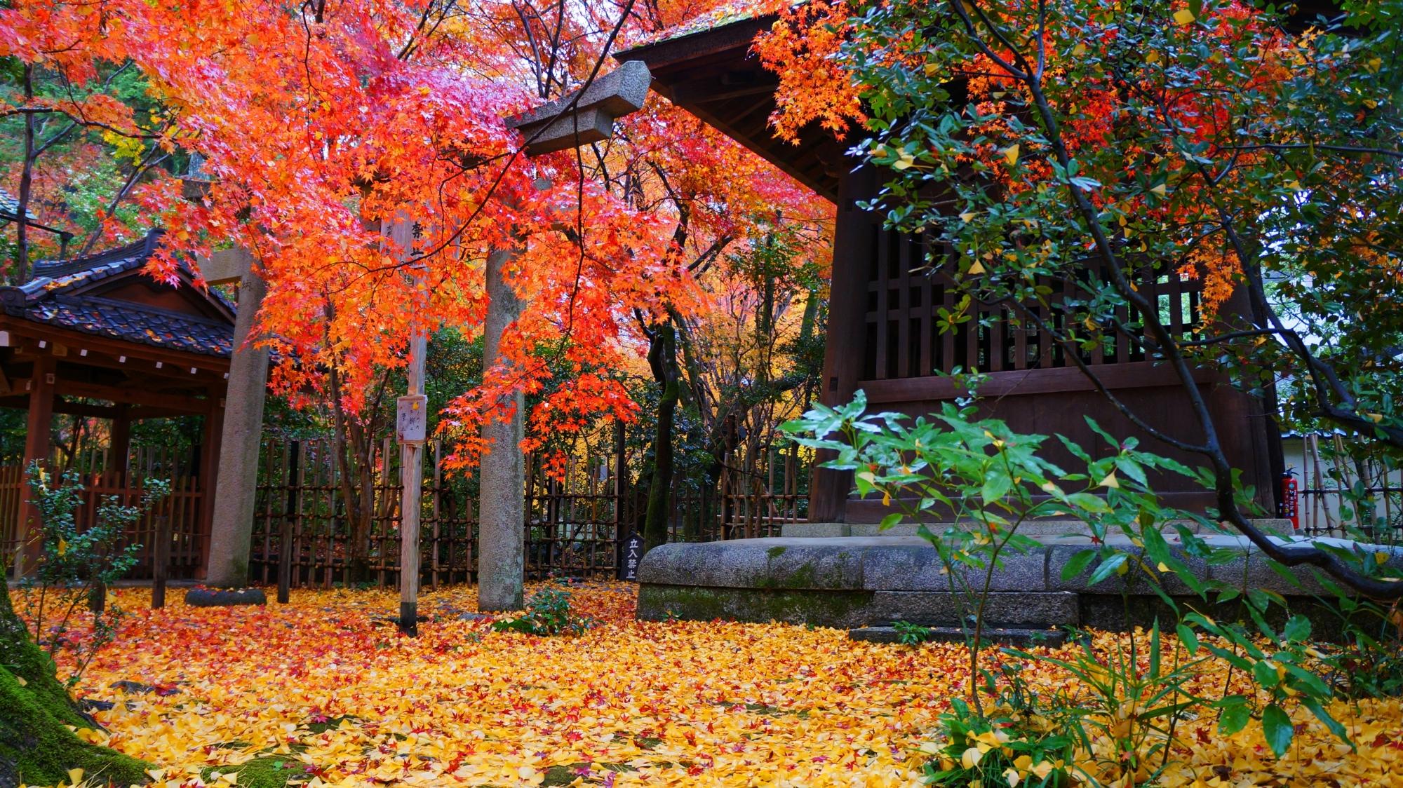 秋色につつまれた鐘楼と井戸屋形