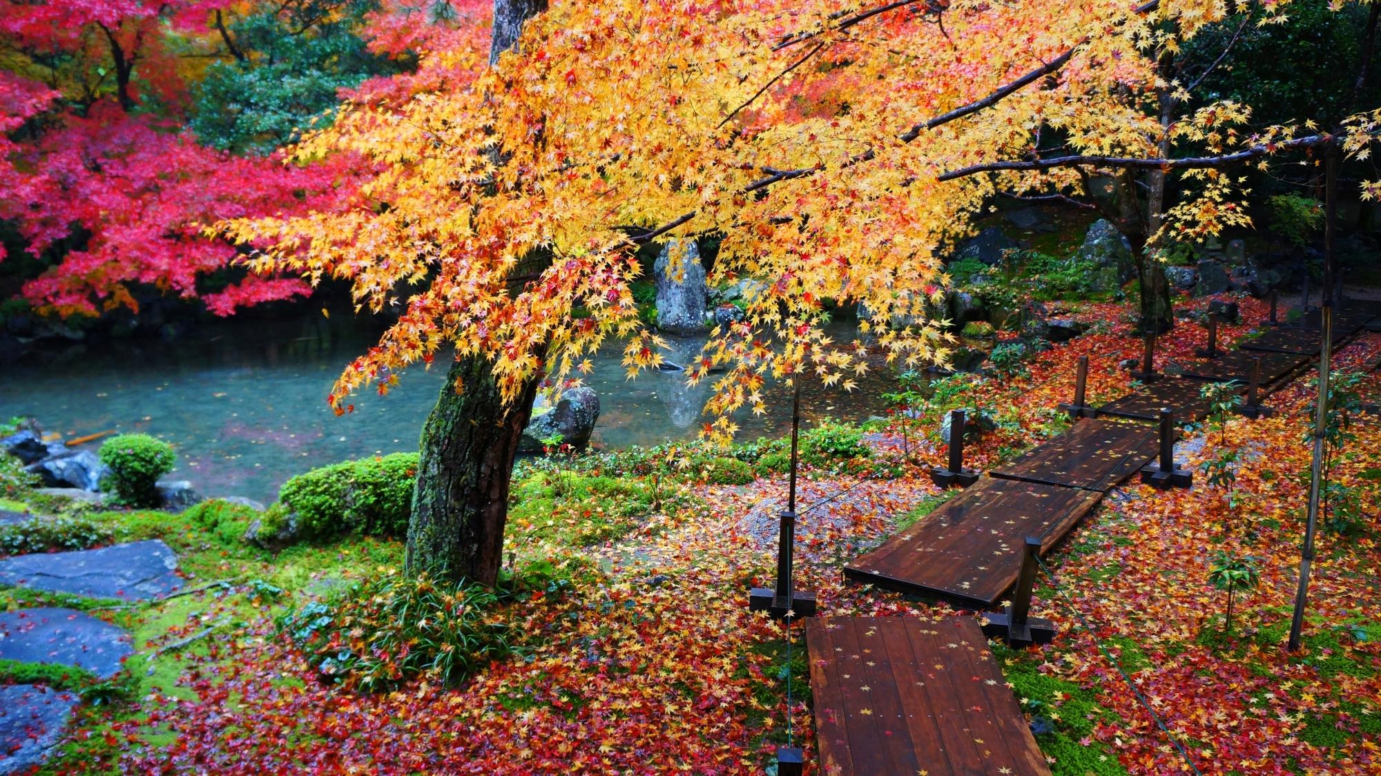 鮮やかに彩られた風情ある木の参道