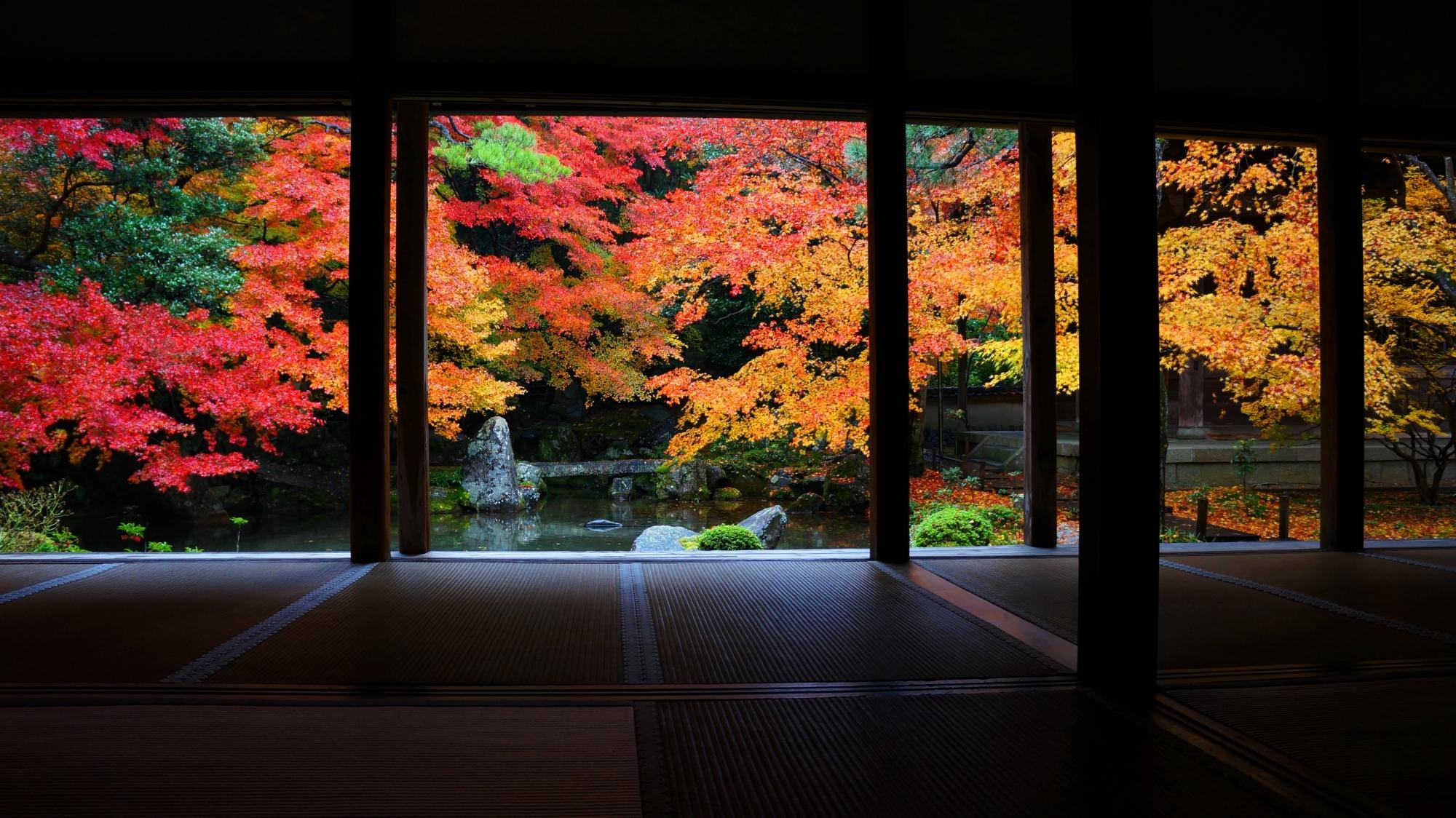 蓮華寺の紅葉に彩られた額縁の池泉式庭園