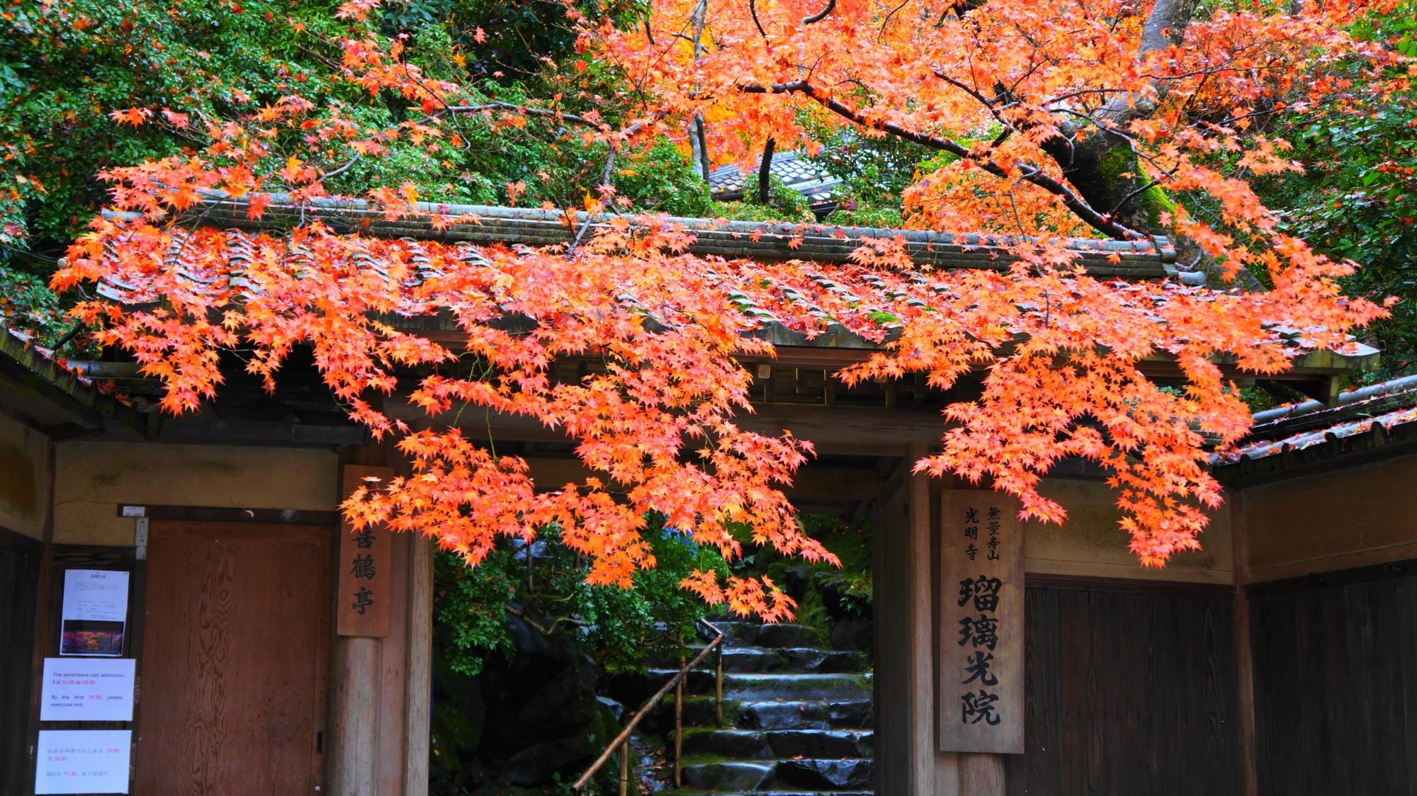 山門を彩る紅葉と奥の石段