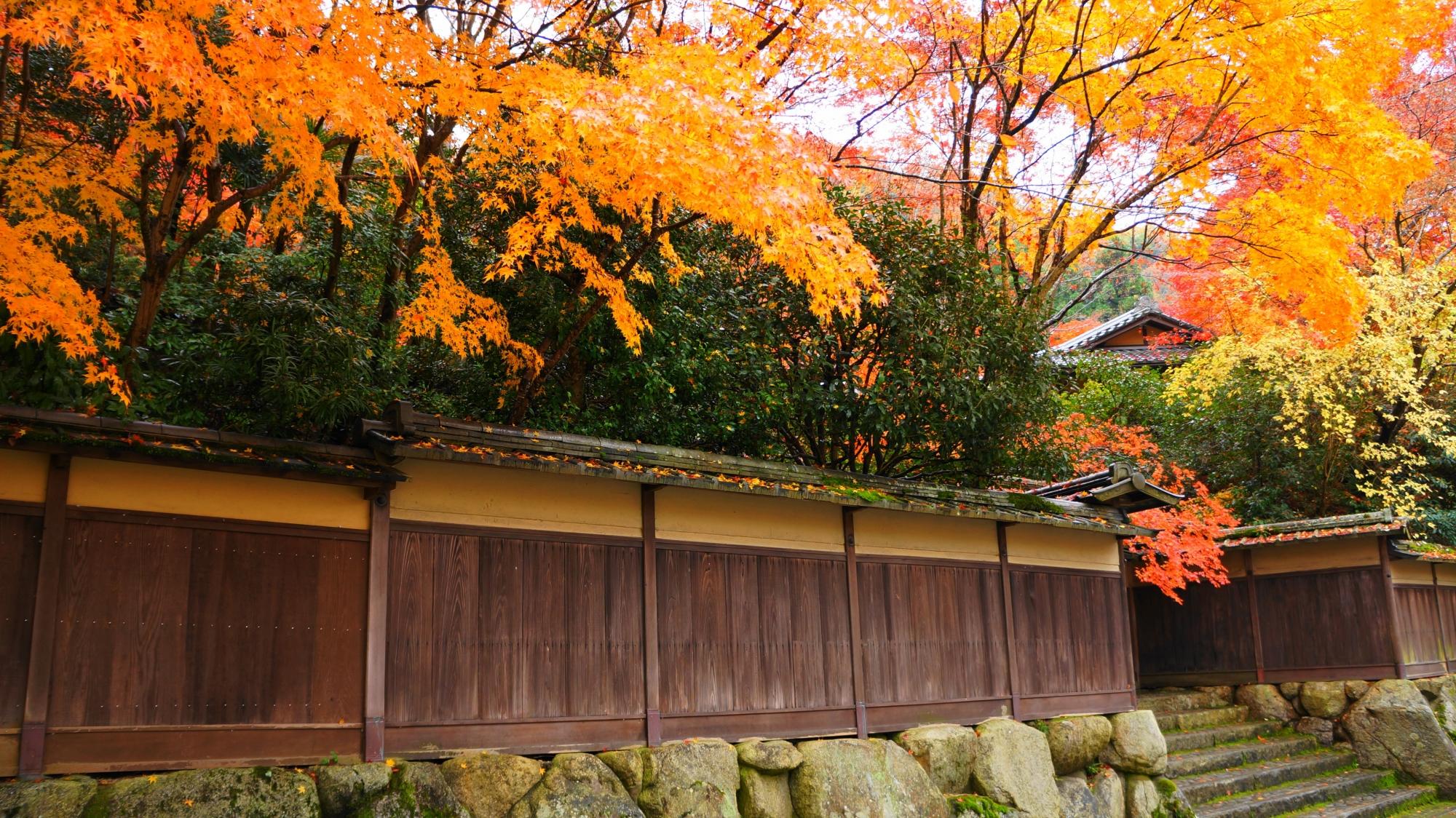 山門付近の柔らかな紅葉