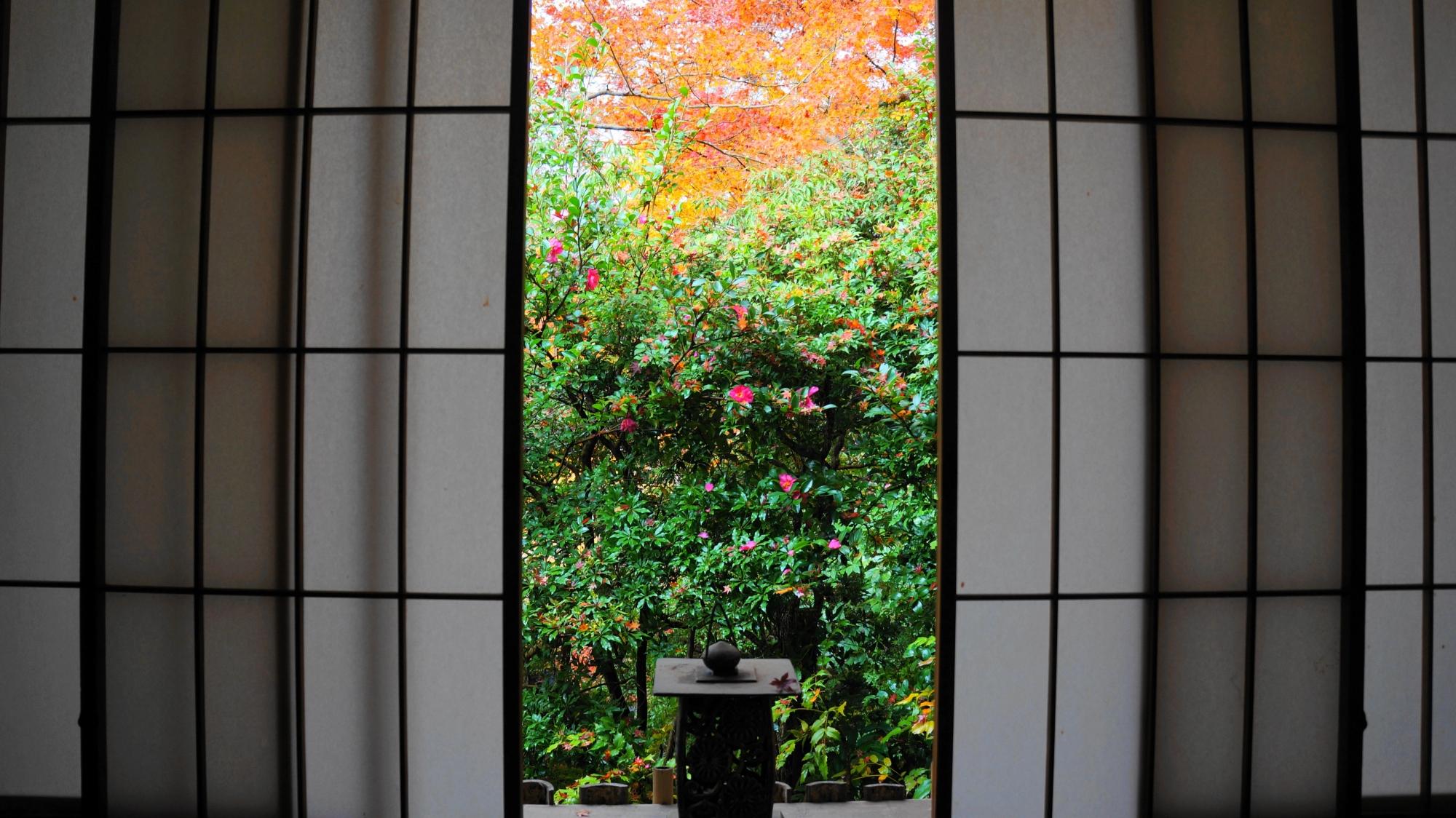 障子から見える風情ある秋の情景