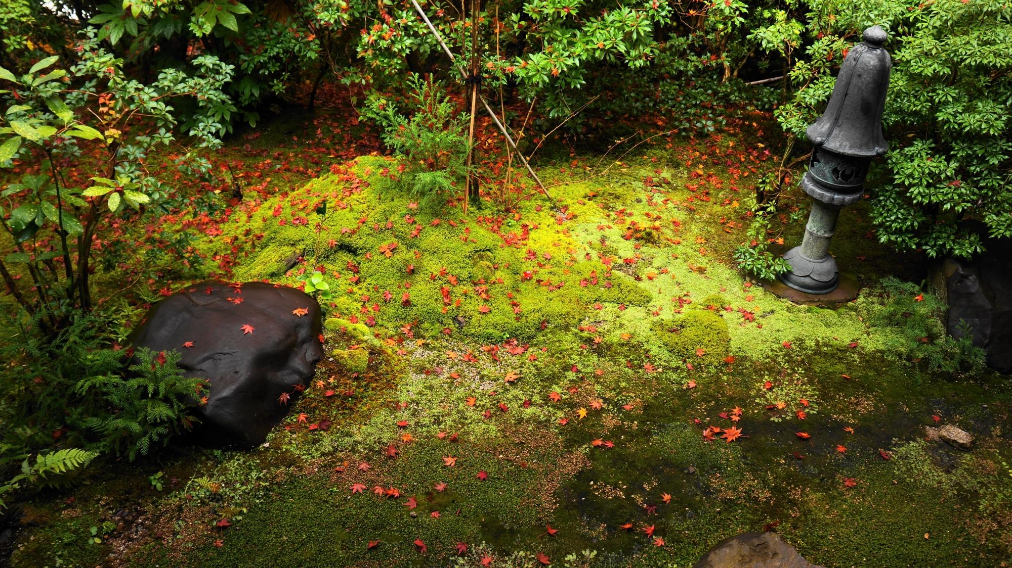 茶庵「喜鶴亭」の緑と散り紅葉