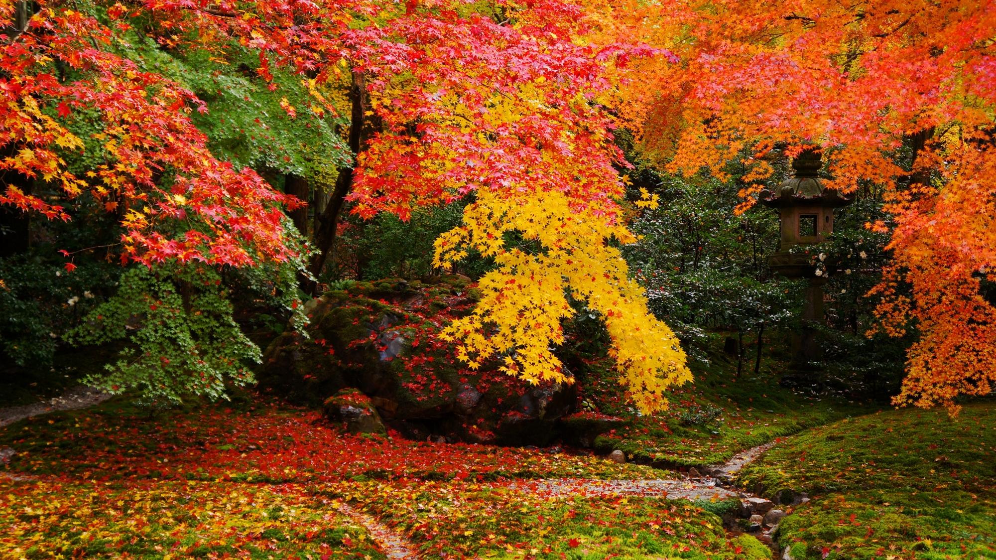 瑠璃の庭の赤や黄やオレンジなどの色とりどりの紅葉