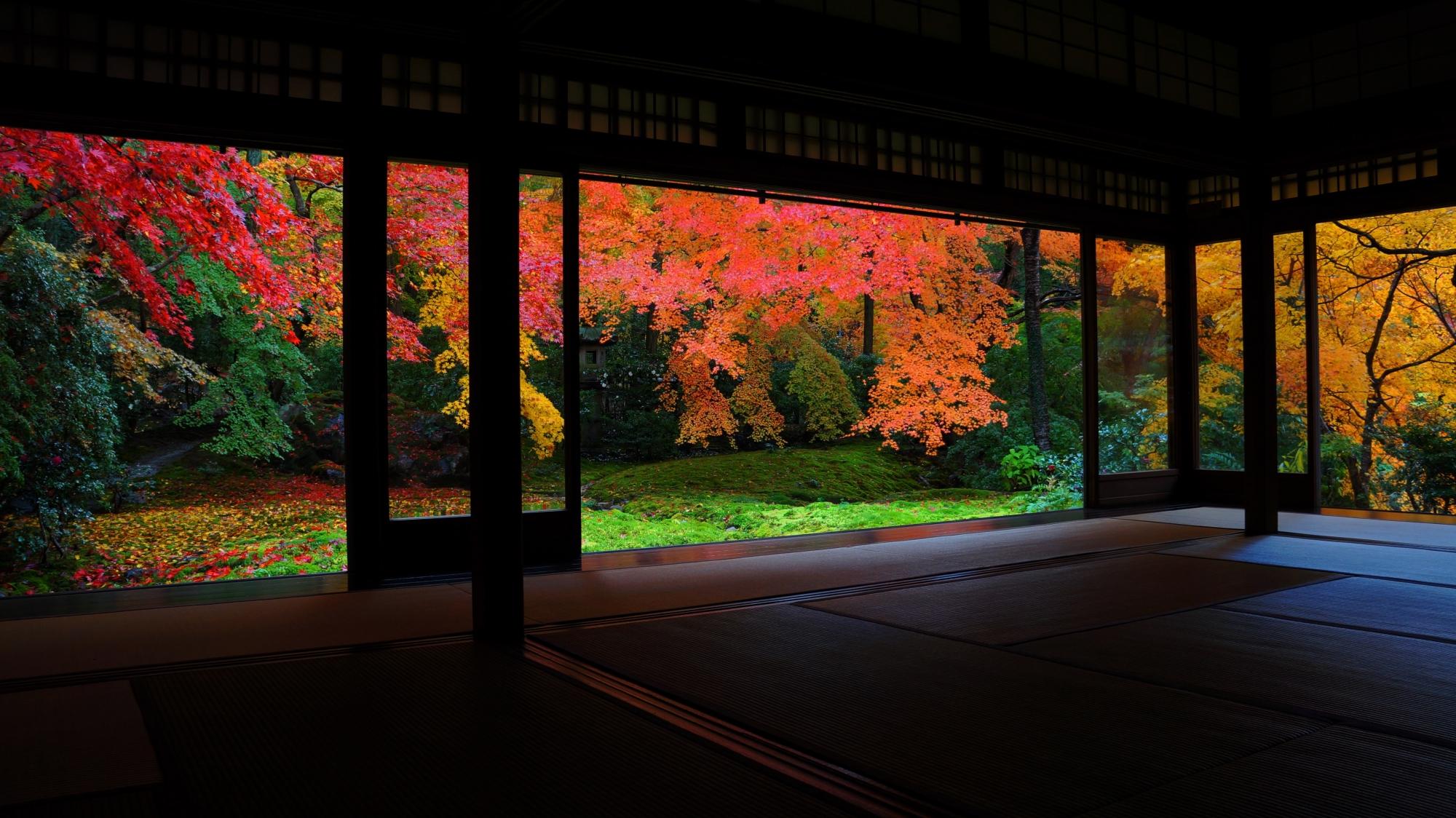 書院の奥から眺めた風情あり美しくもある瑠璃の庭