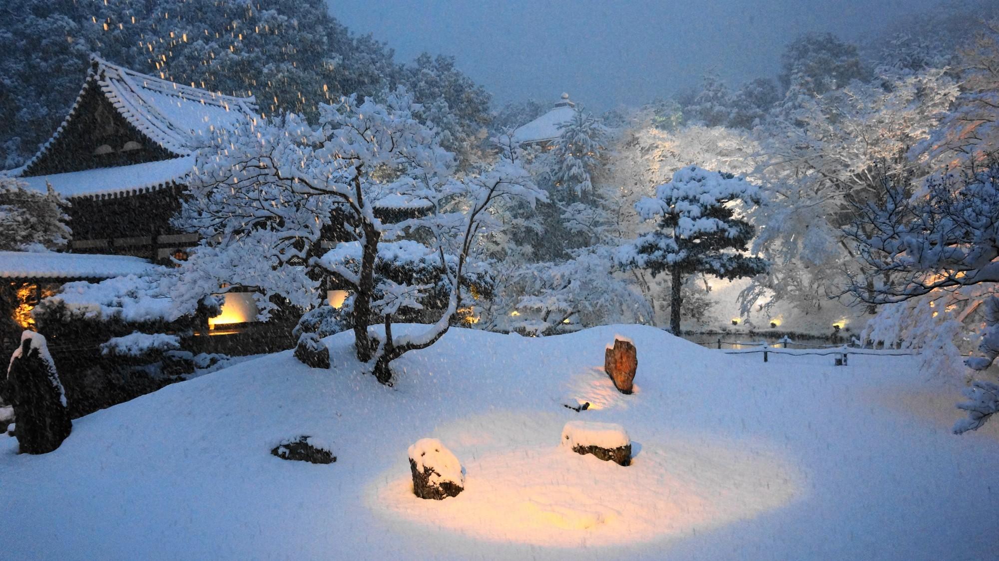 高台寺 雪 白銀の庭園と圧巻の冬景色