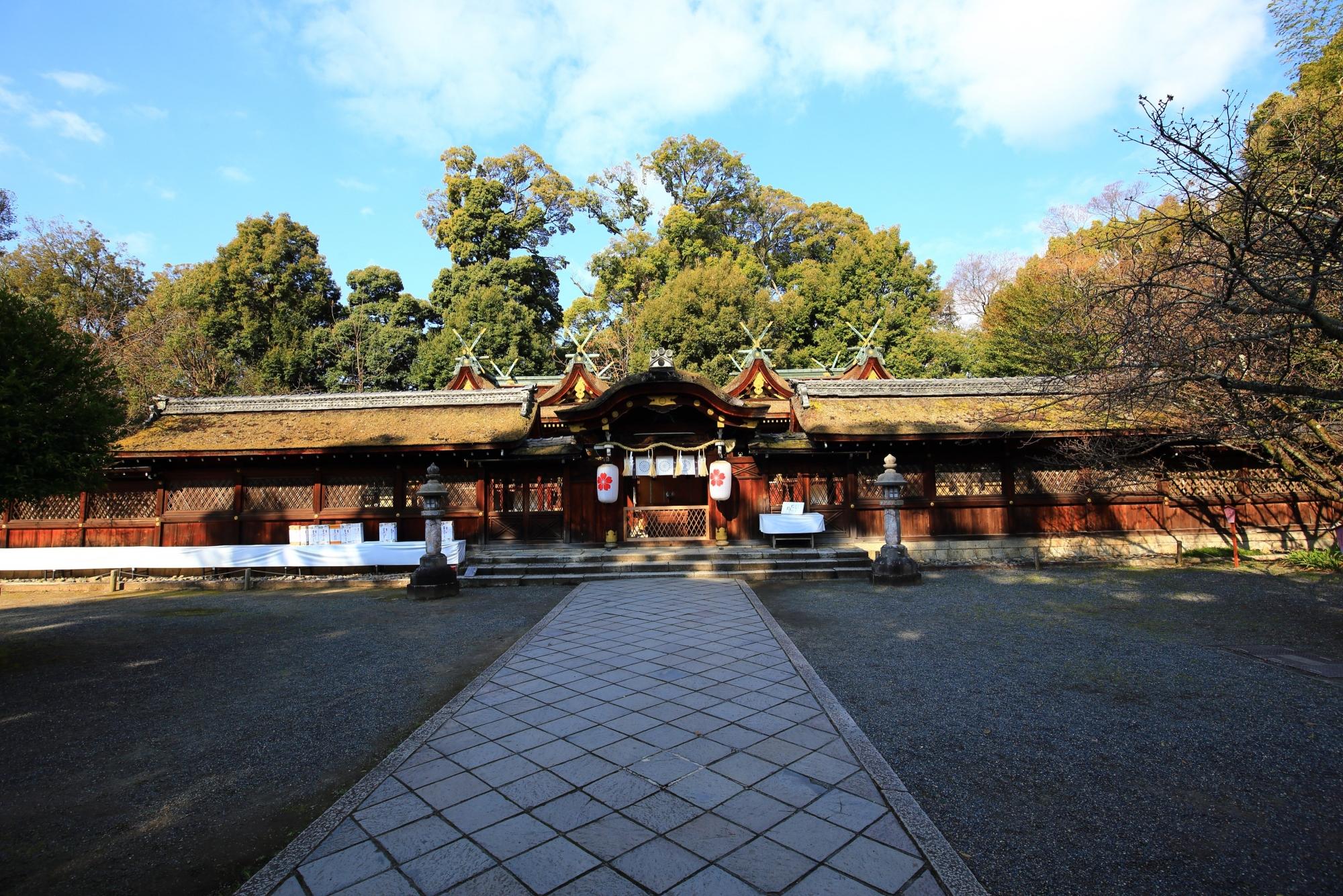平野神社の凛として構える本殿