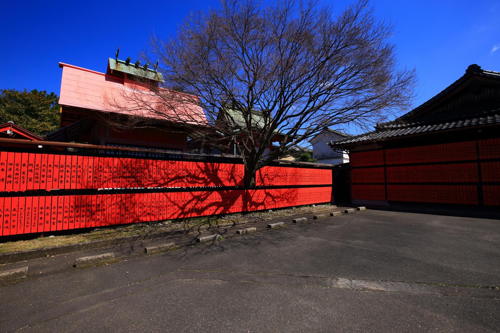 最高の青空に映えるずらりと並ぶ赤い玉垣