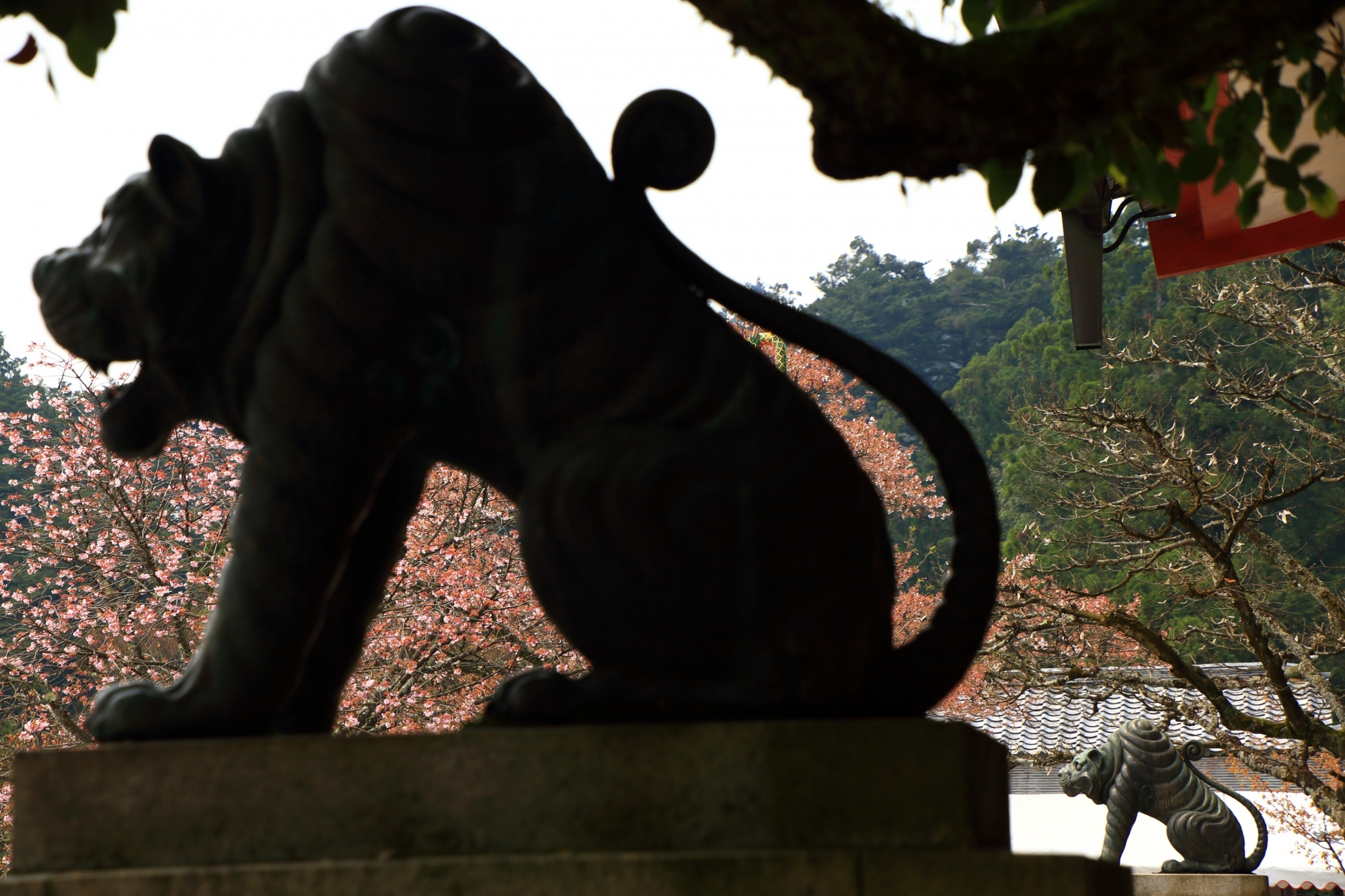 鞍馬寺の金堂前の狛虎