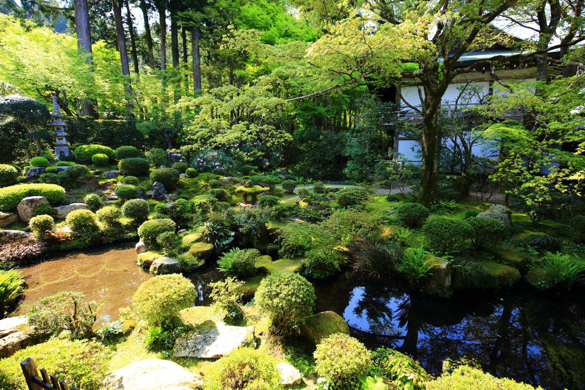 三千院の新緑につつまれた聚碧園(しゅうへきえん)