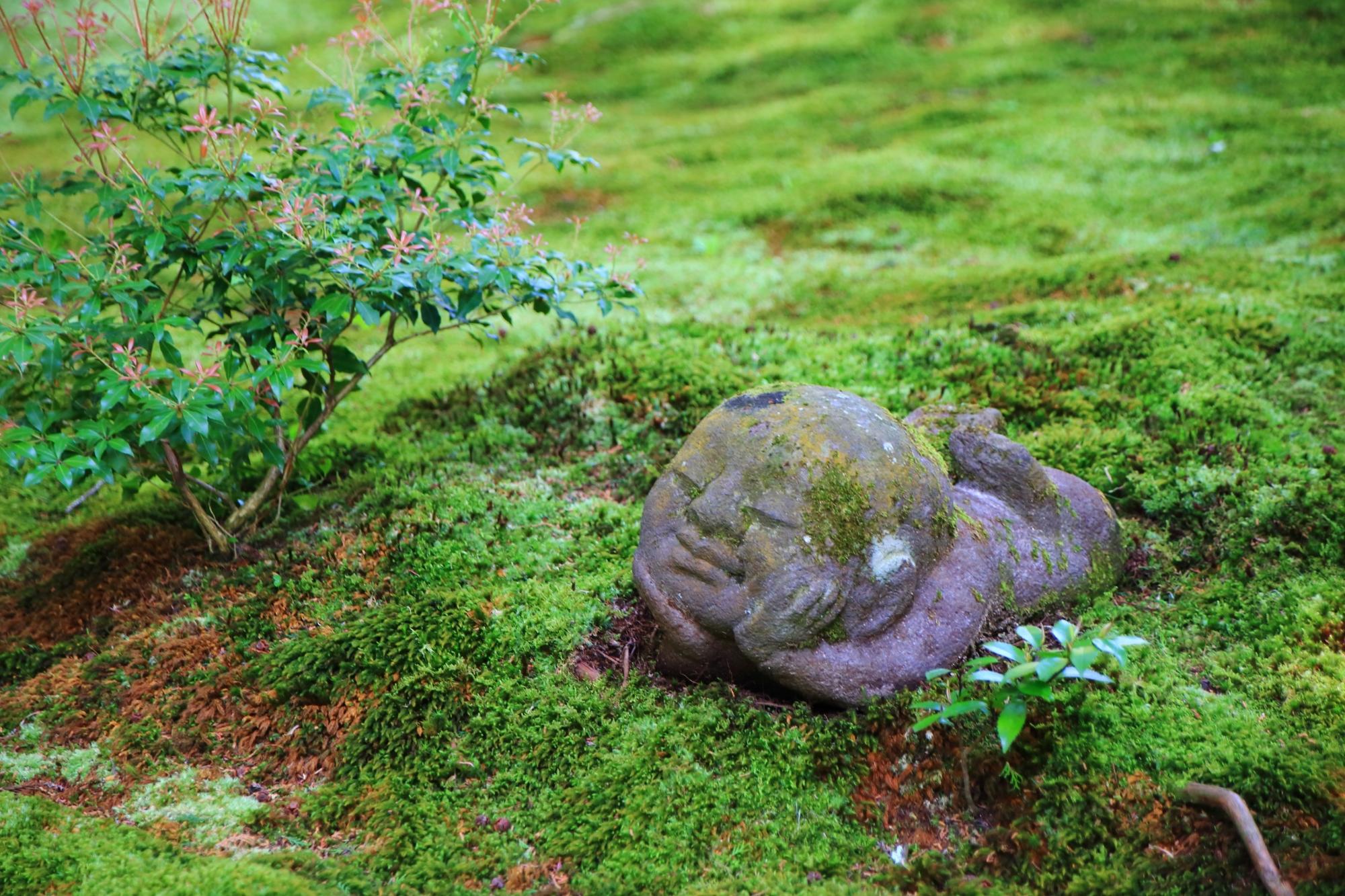 三千院の苔の上に寝そべるわらべ地蔵さん