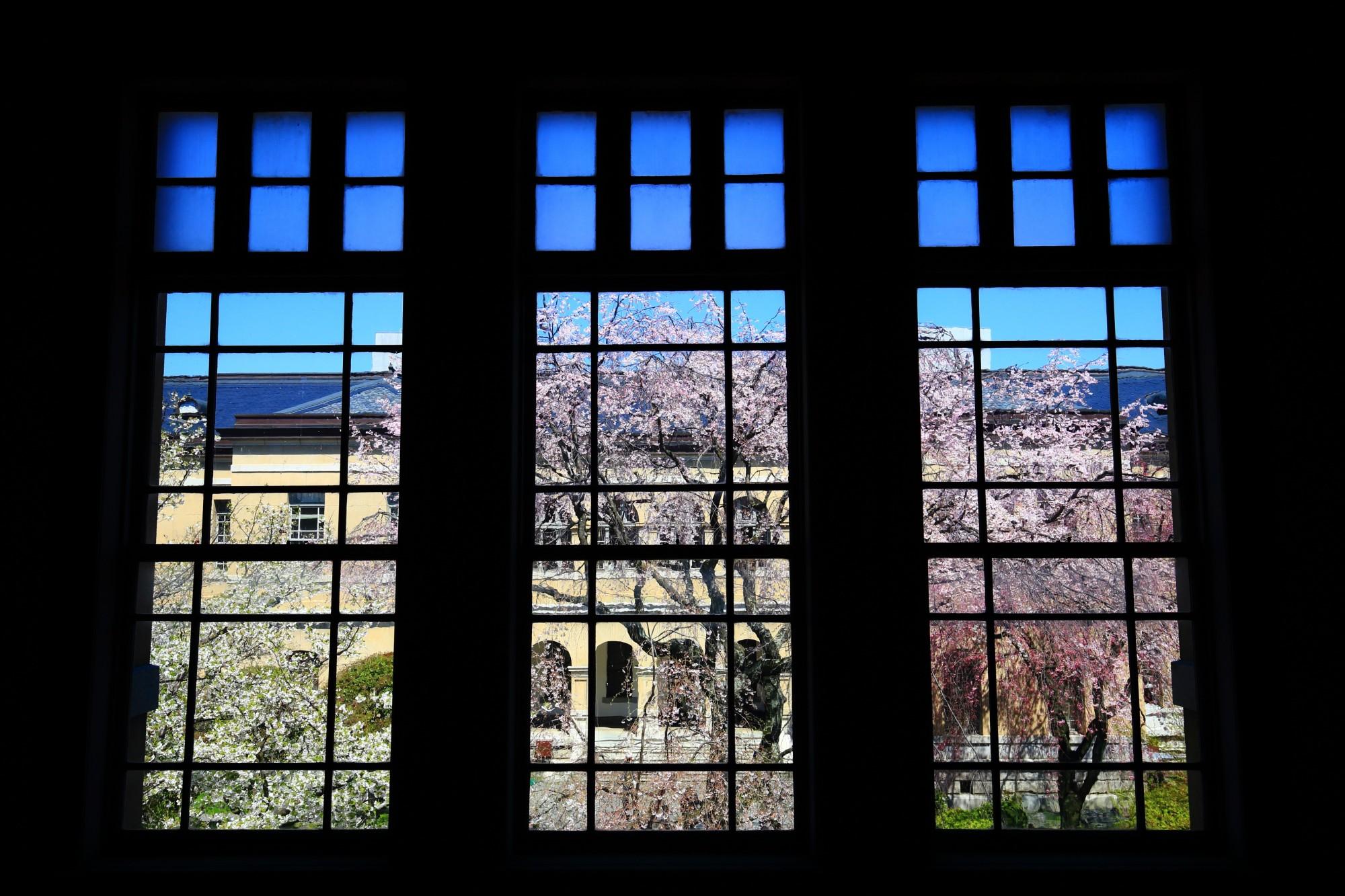 近代建築と桜と青空