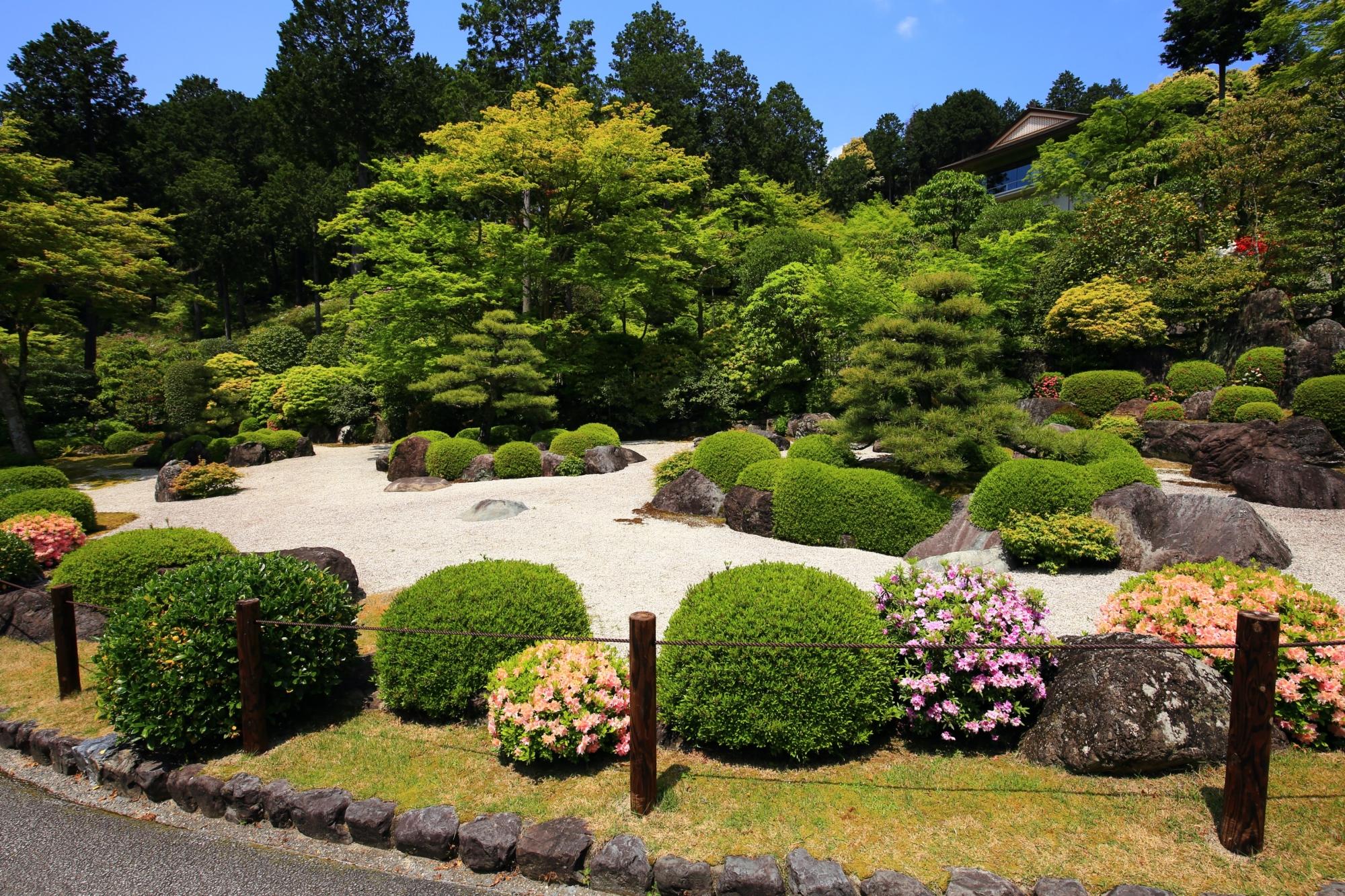 鮮やかな緑と白砂に華やかなツツジが彩りをそえる三室戸寺の石庭