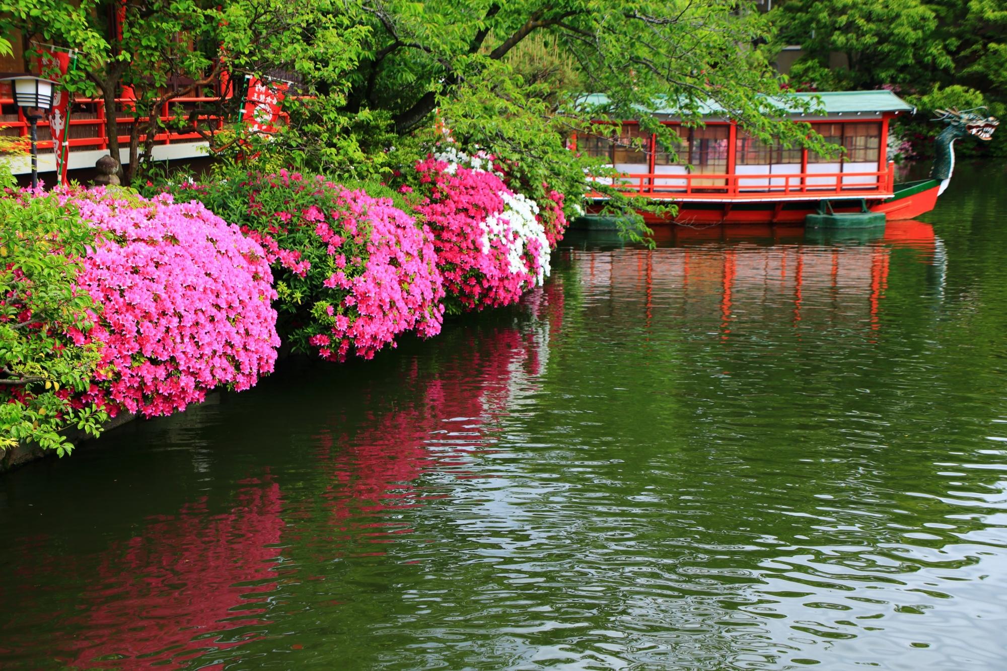 神泉苑の龍王船と煌くツツジ