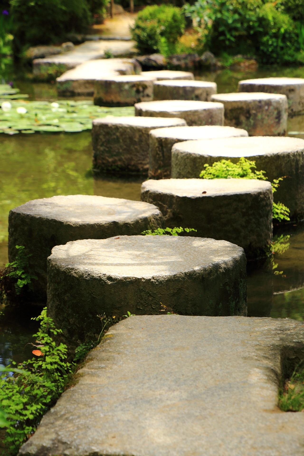 歩いて渡れるも落ちそうで少し怖い平安神宮の臥龍橋(がりゅうきょう)