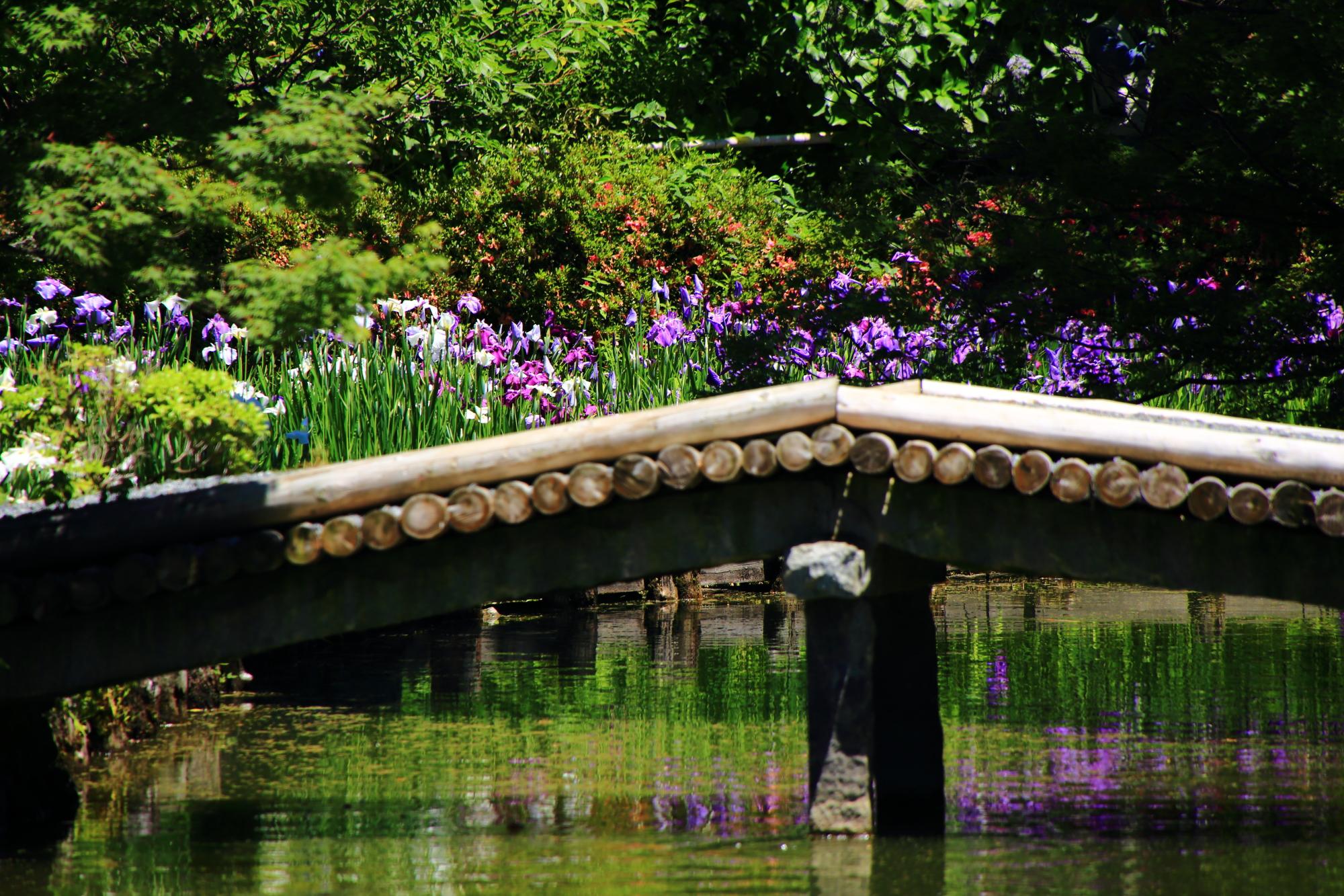 花菖蒲を演出する趣きのある木の橋
