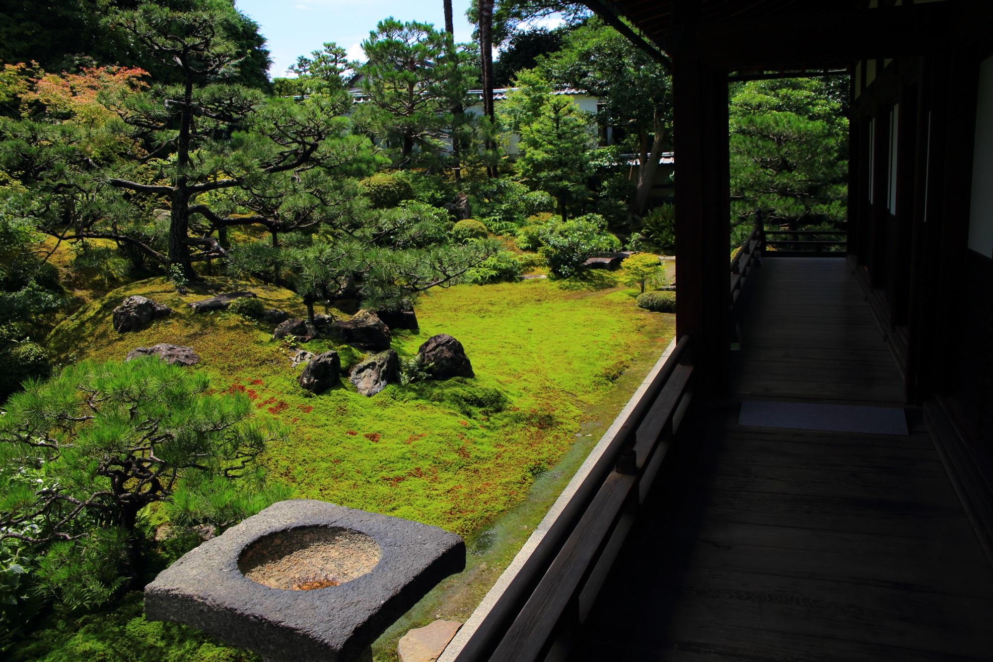 方丈を囲むようにL字型になっている建仁寺両足院の方丈庭園
