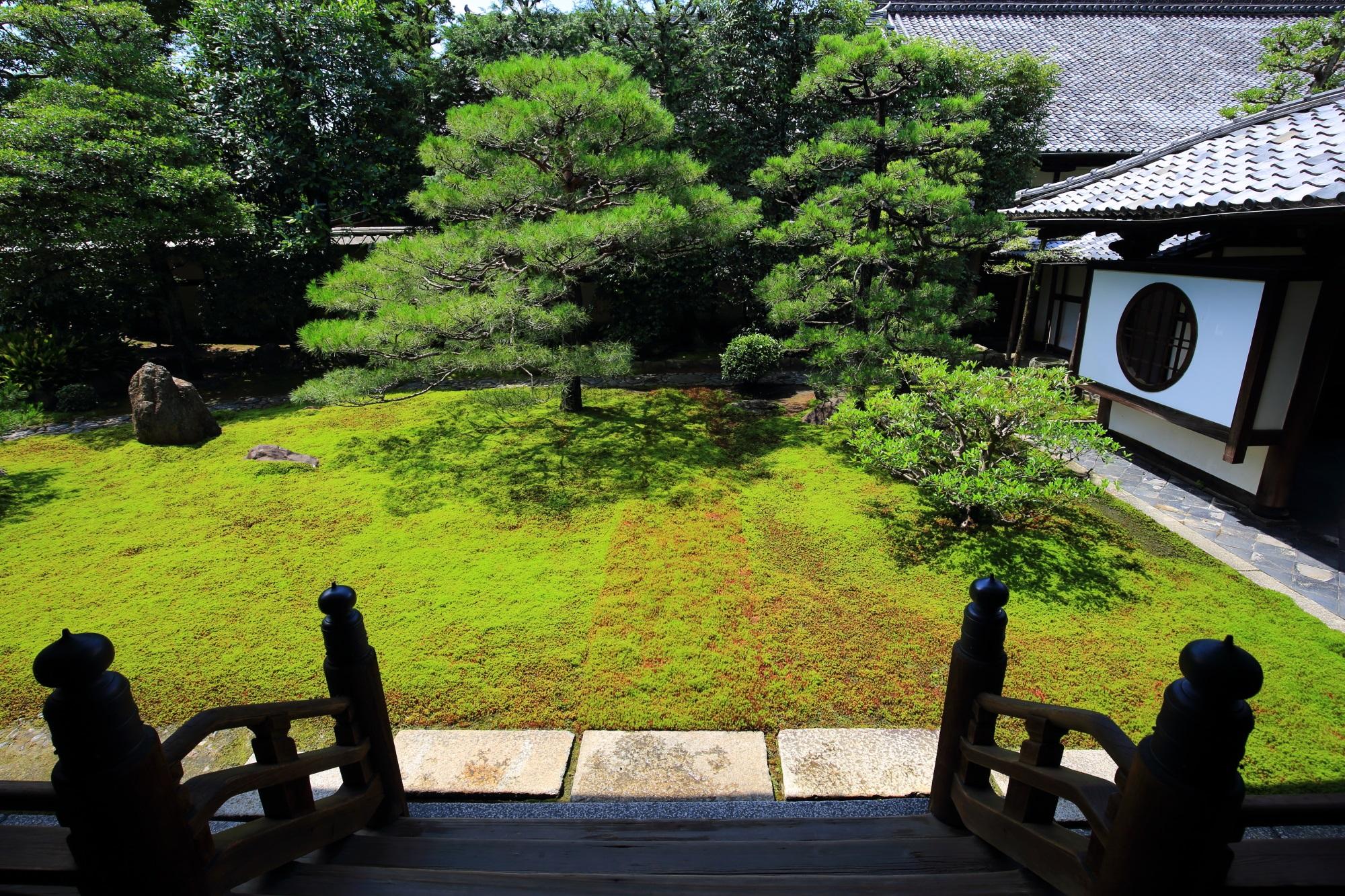 緑溢れる建仁寺両足院の方丈庭園