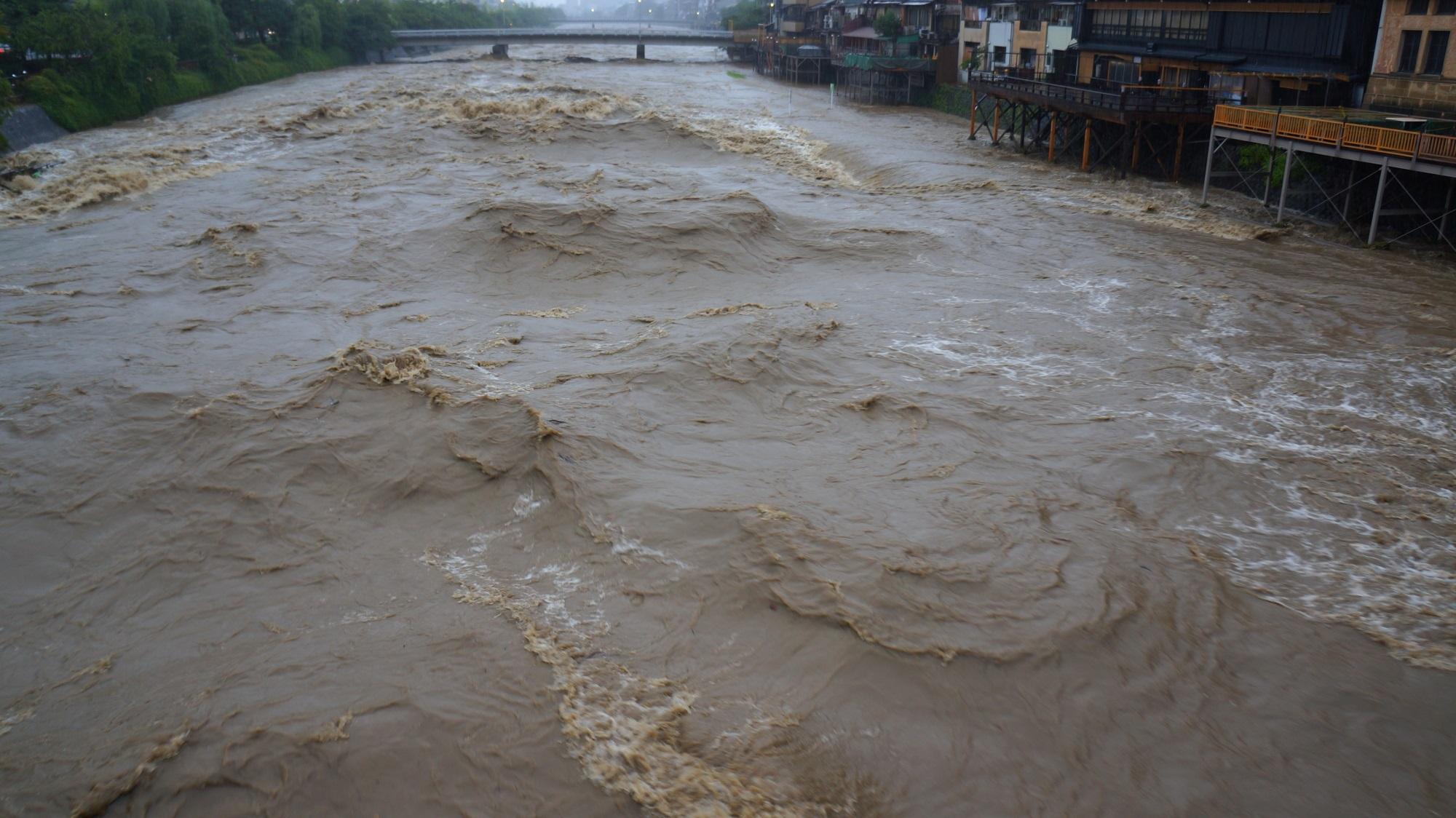茶色い水が暴れる増水した鴨川