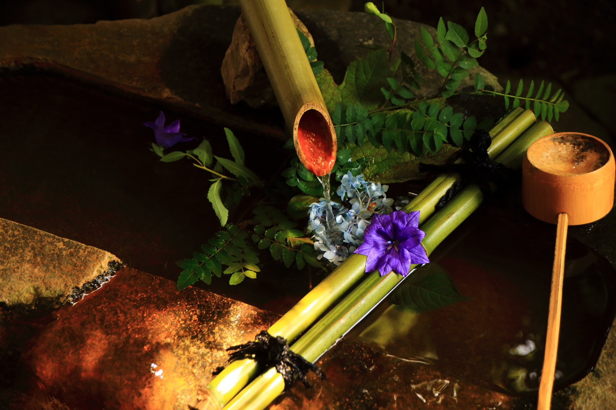 天得院の玄関付近の桔梗の花が添えられた風情ある手水鉢