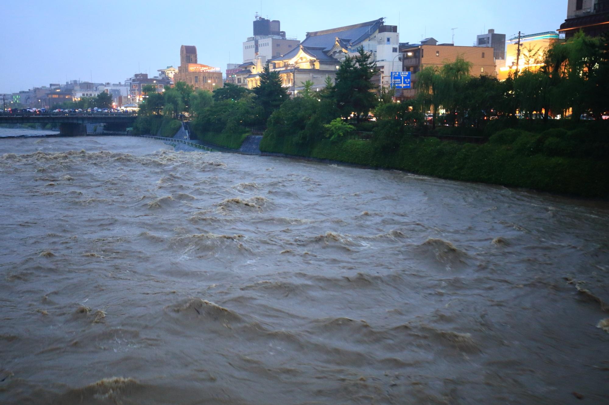 降り続く雨によって増水した鴨川