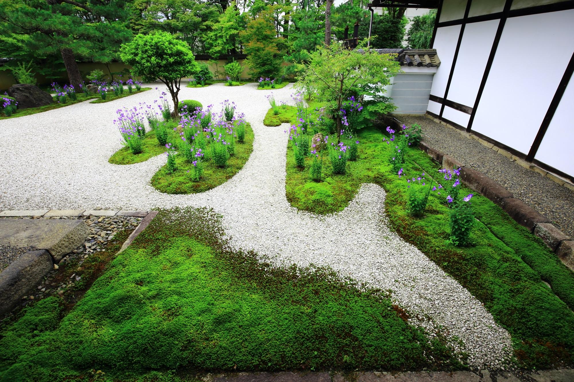良く手入れされた上品な枯山水庭園である廬山寺の源氏庭