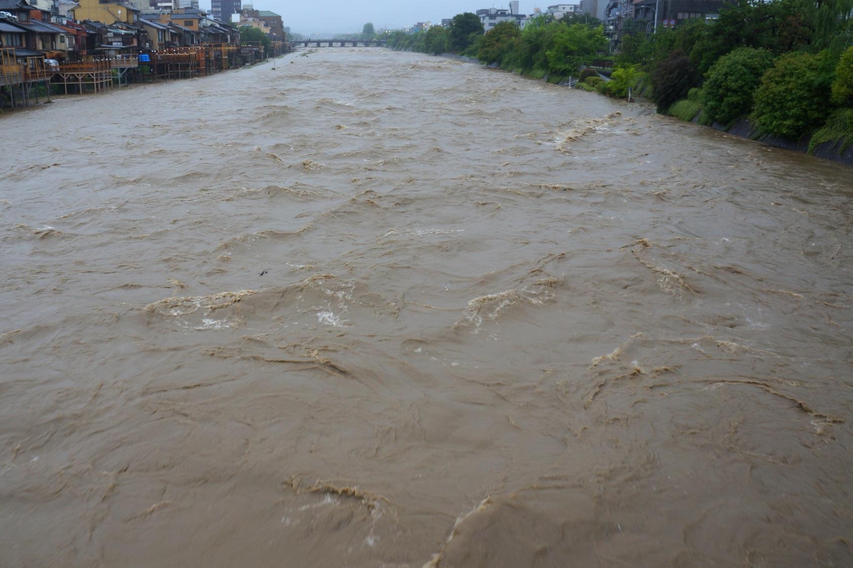2015年7月18日の台風11号の大雨で増水した床もカップルも勝てない増水した鴨川