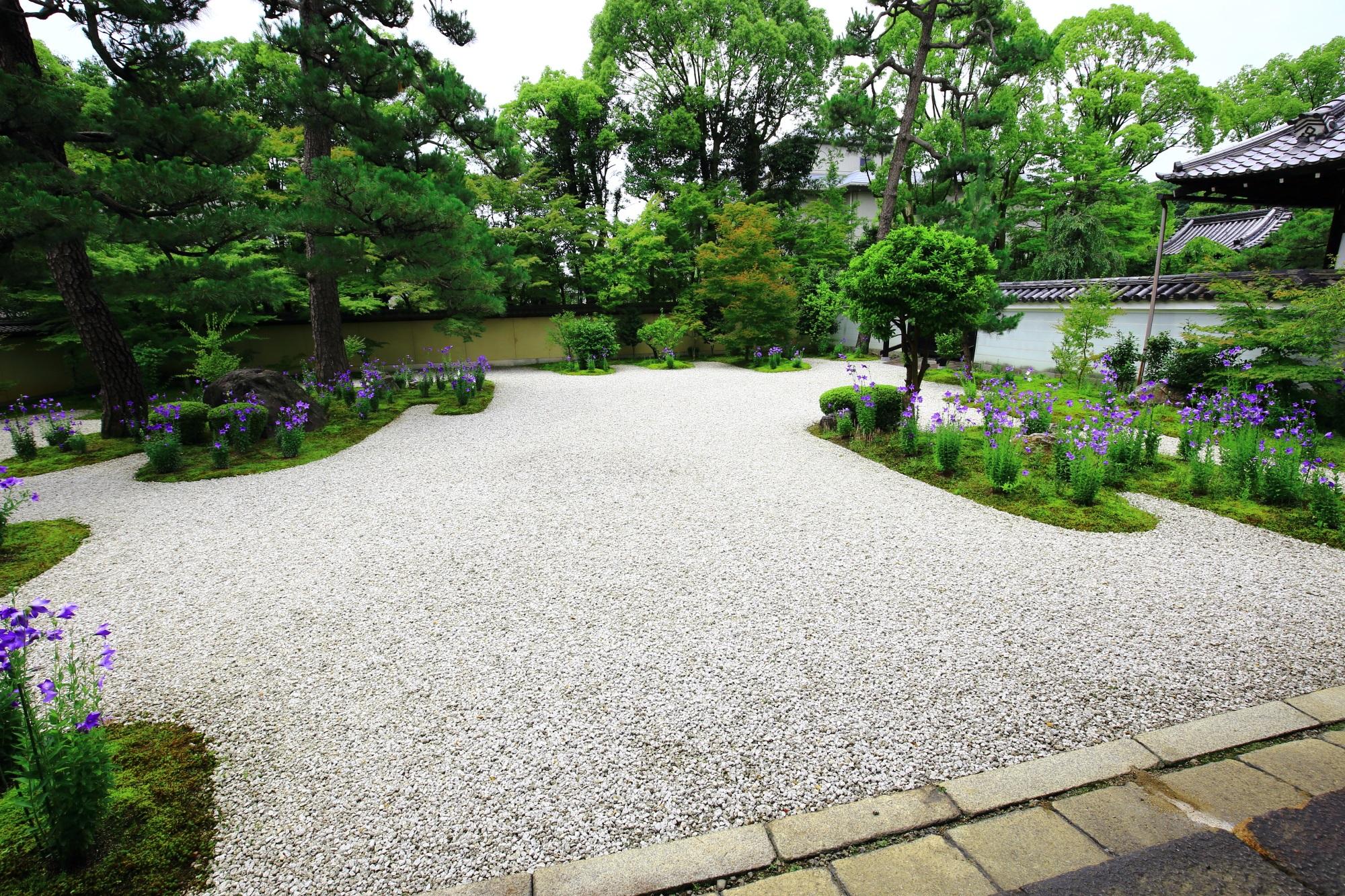 一見シンプルも趣きのある初夏の源氏庭