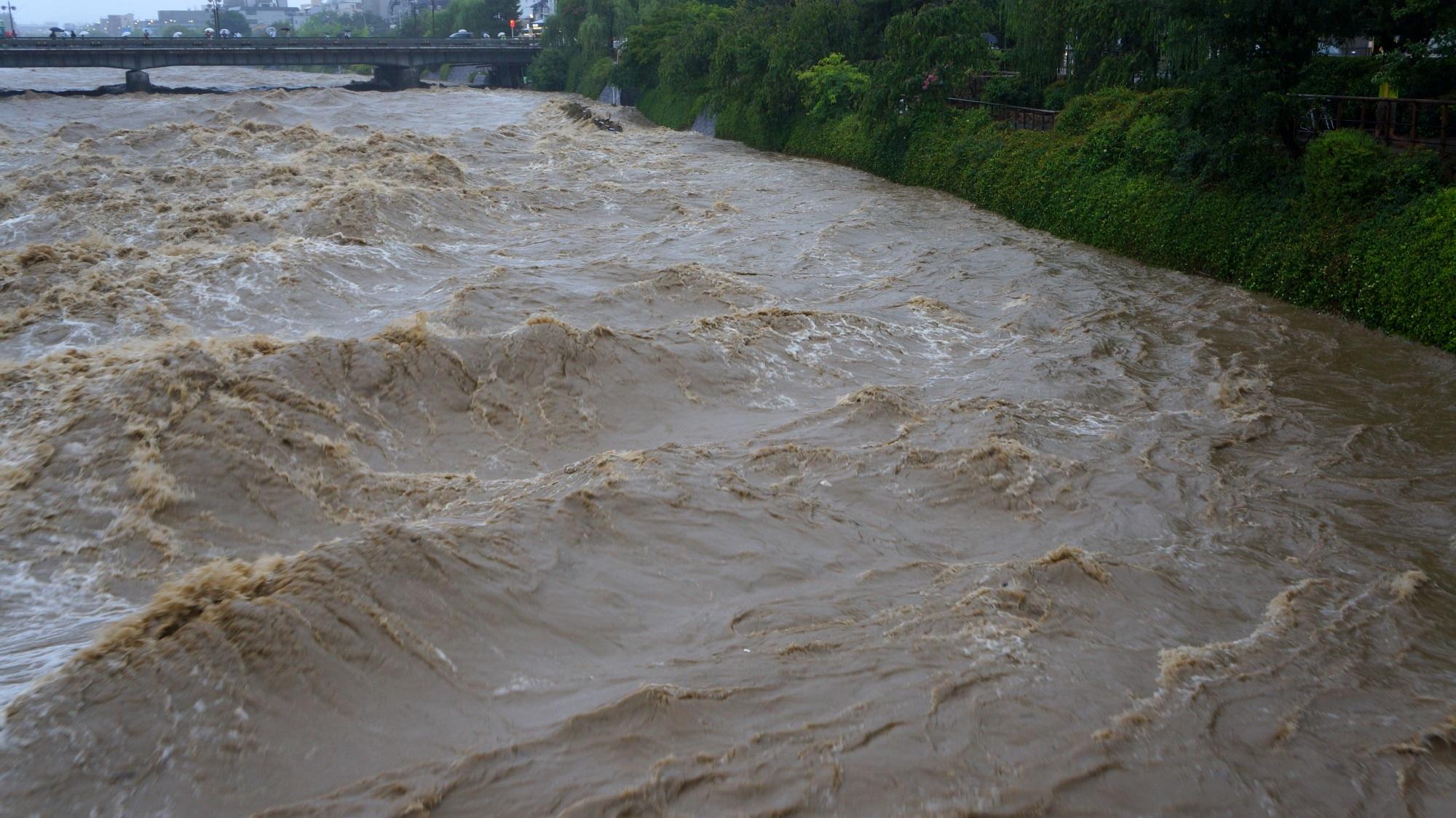 物凄い勢いで大量の水が押し寄せて来る増水した鴨川